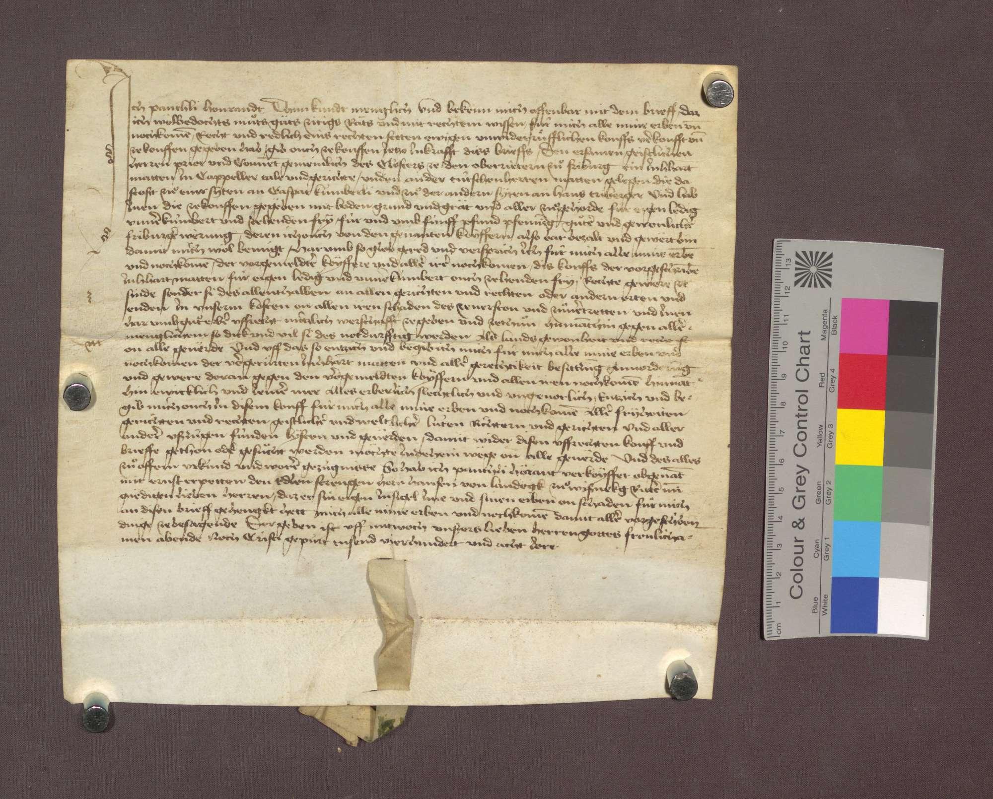Panthli Hourandt verkauft dem Kloster Oberried zu Freiburg 1 Juchert Matten im Kappeler Tal, unten an der Deutschherrenmatte gelegen, um 5 Pfund Pfennig., Bild 1