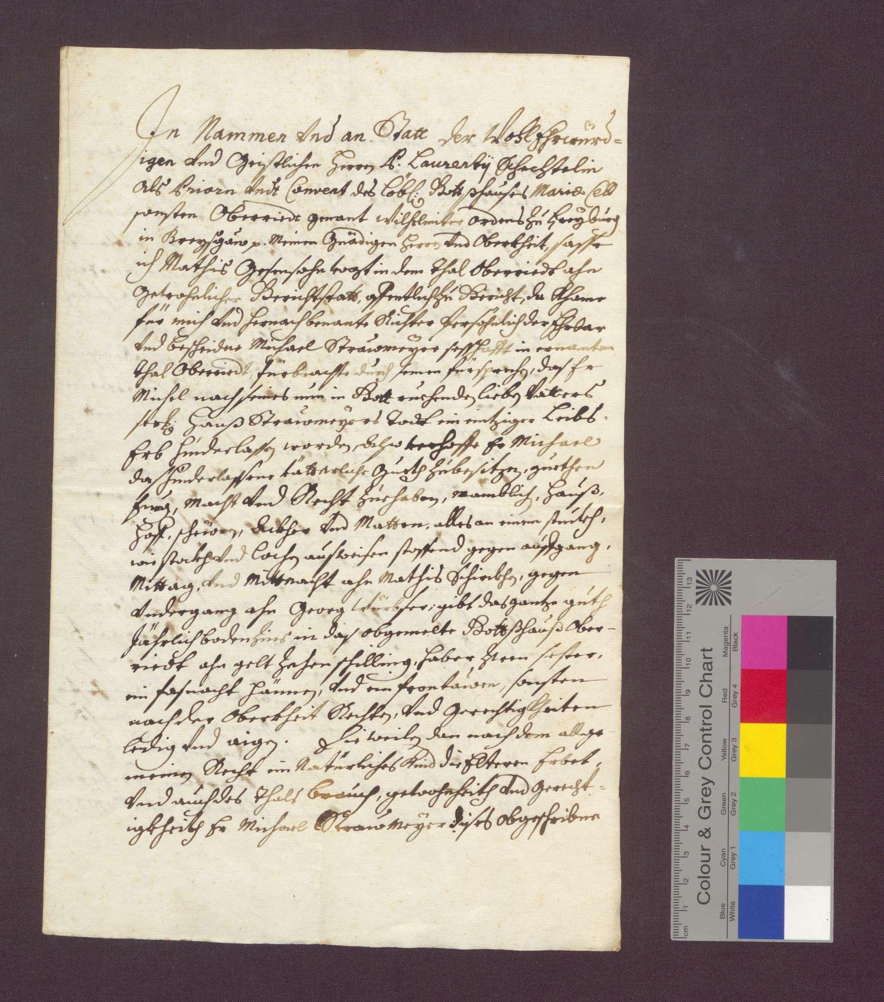 Das Oberrieder Talgericht des Freiburger Klosters weist den Michel Stromeier als einziges Kind des Hans Stromeier in den Besitz der genannten ererbten Güter ein., Bild 3