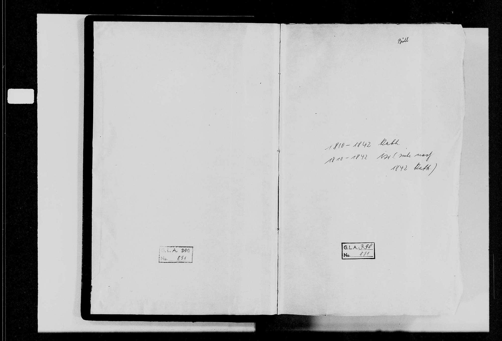 Bühl, katholische und israelitische Gemeinde: Geburtenbuch 1810-1842, Bild 3