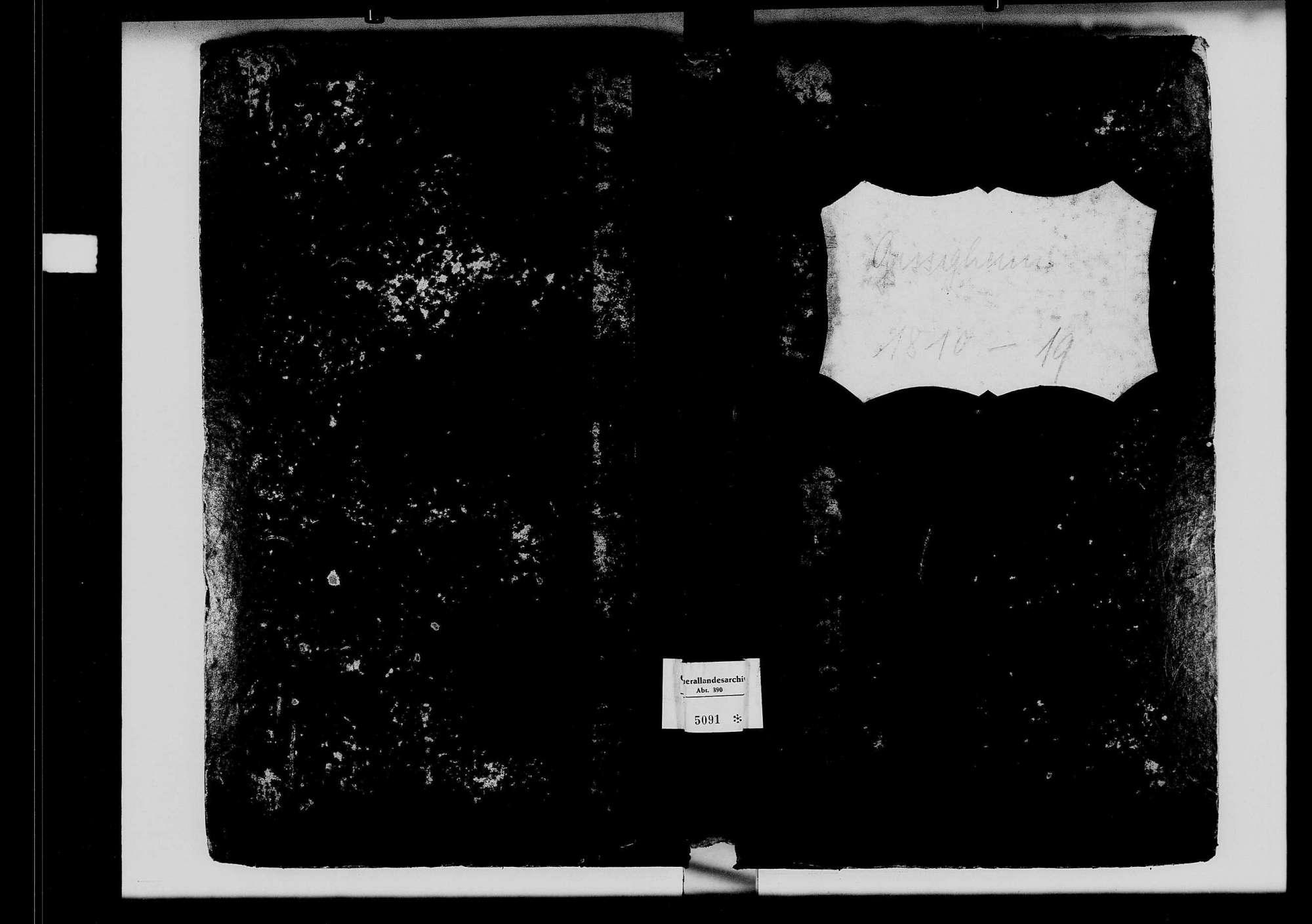 Gissigheim, katholische und israelitische Gemeinde: Standesbuch 1810-1819, Bild 2