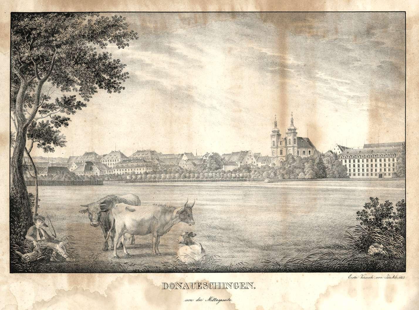 Donaueschingen von der Mittagsseite, Bild 1