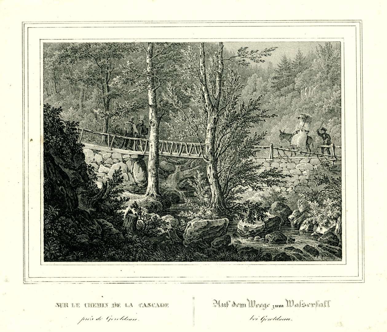 Auf dem Wege zum Wasserfall bei Geroldsau, Sur le chemin de la cascade près de Geroldsau, Bild 1