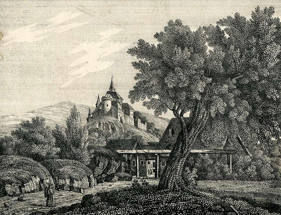 Zwingenberg am Nekar (725), Bild 1