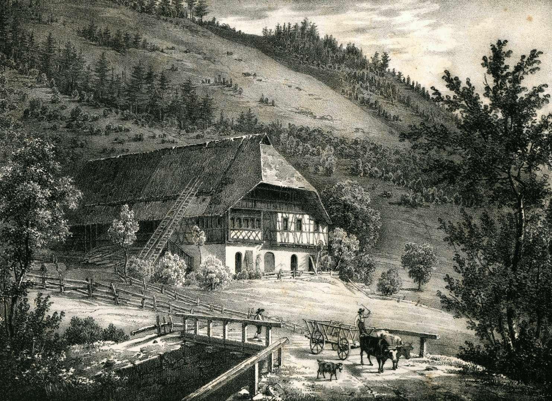 Bauernhaus im Schappacher Thal bei Rippoldsau, Bild 1