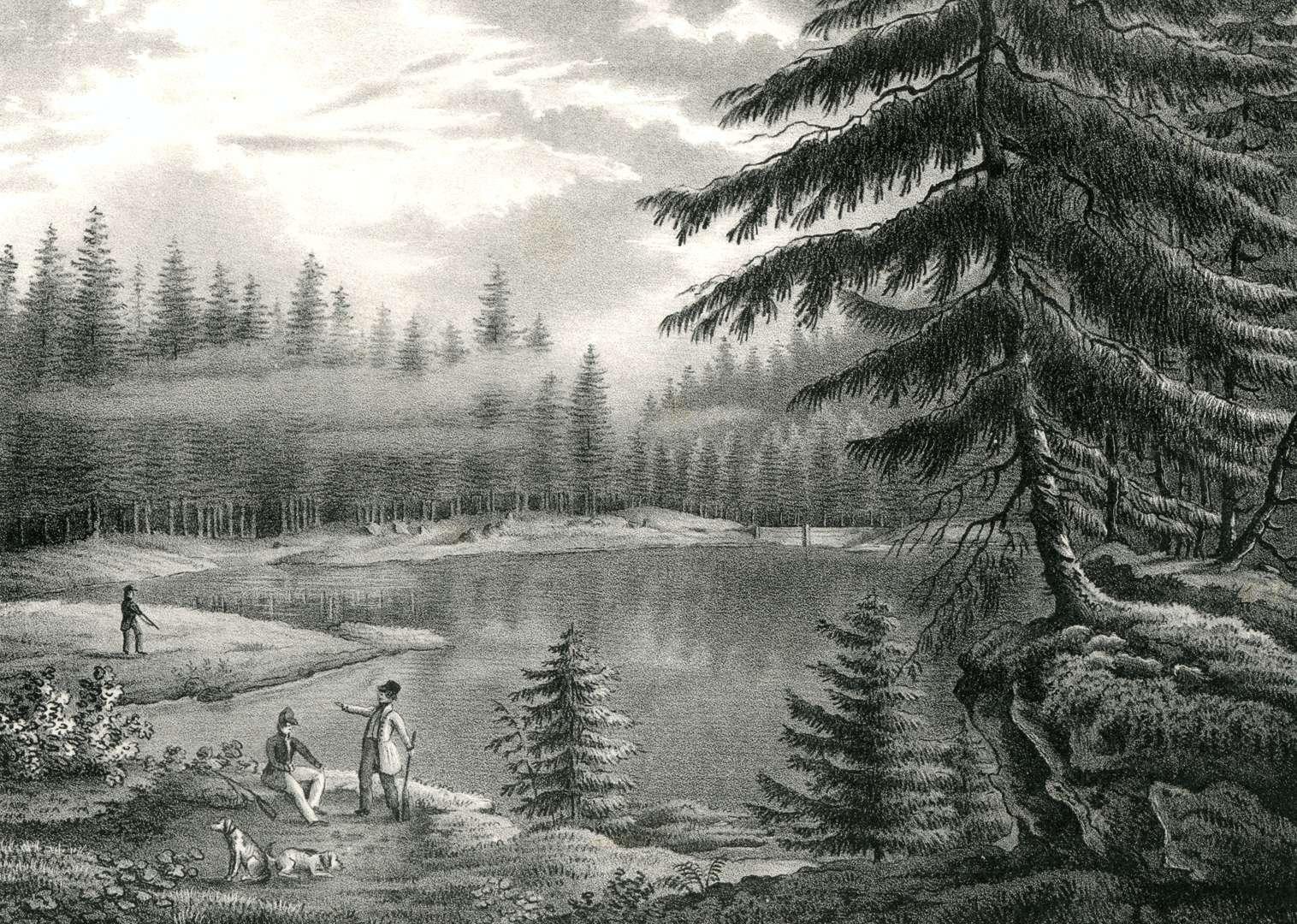 Der Wildsee, eine Stunde von Rippoldsau, Bild 1