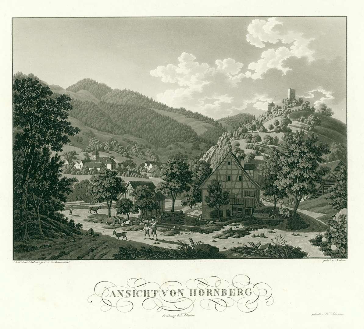 Ansicht von Hornberg, Bild 1