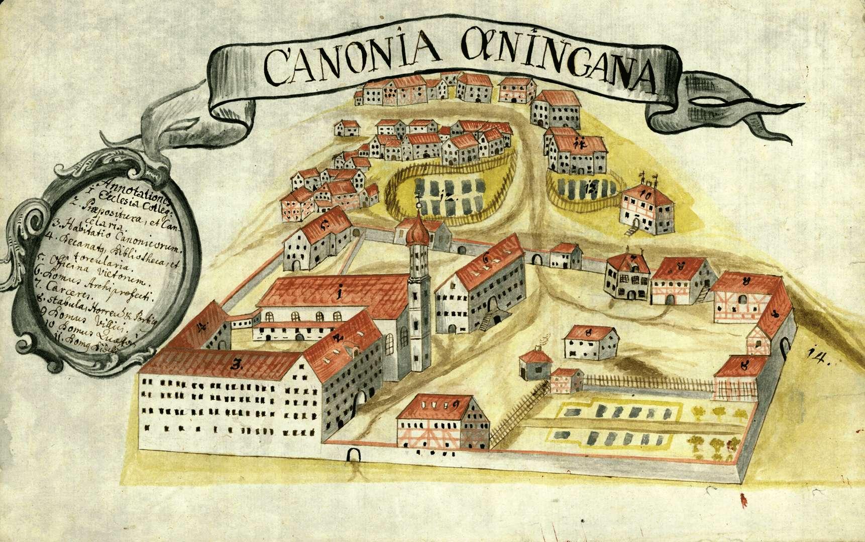 Canonia Oeningana, Bild 1