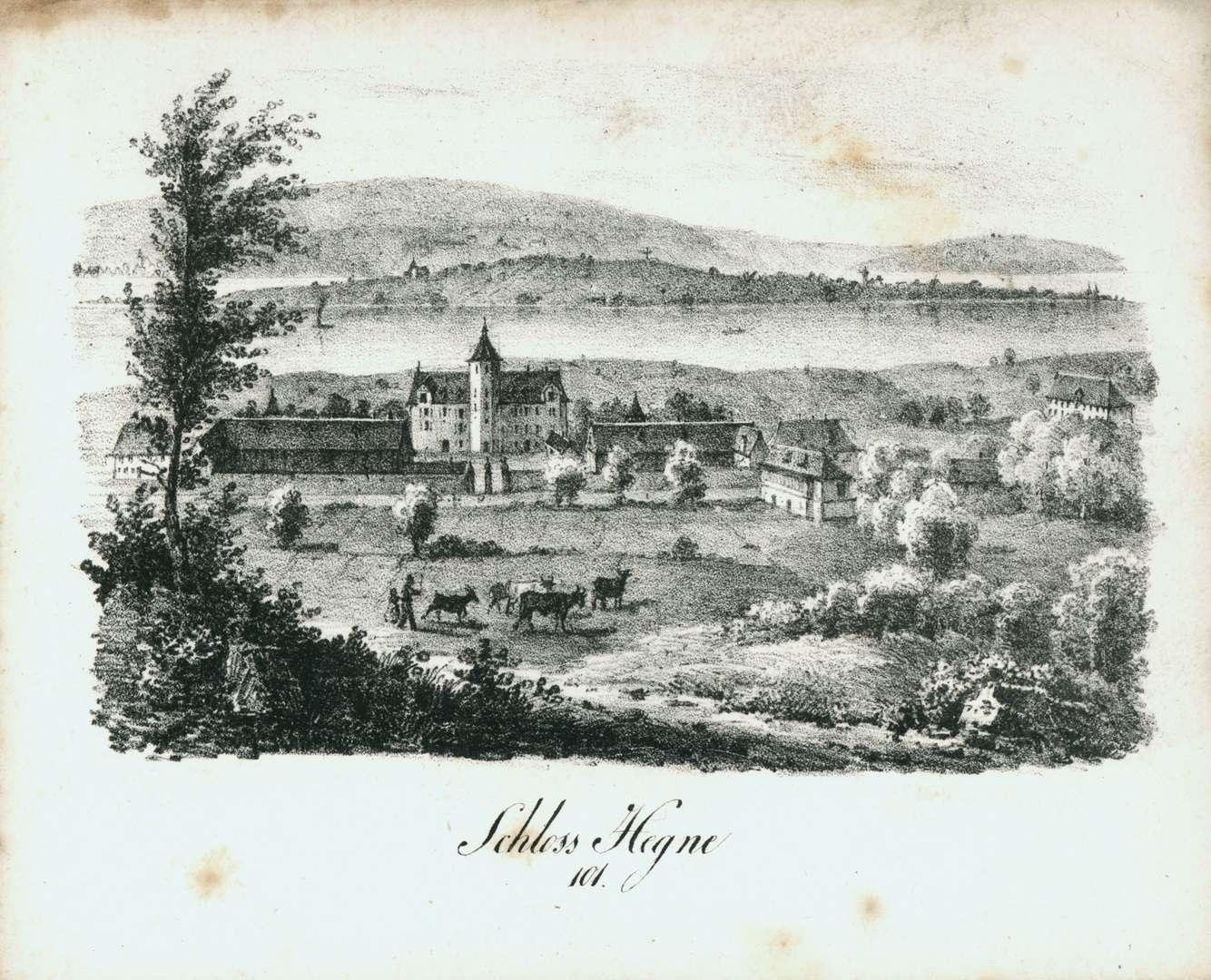 Schloss Hegne, Bild 1