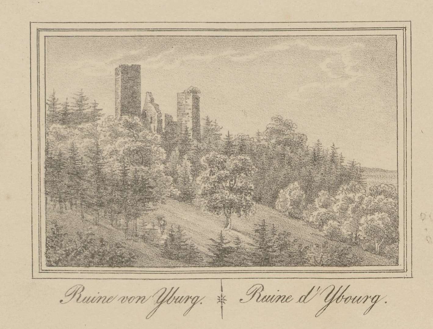 Ruine von Yburg - Ruine d
