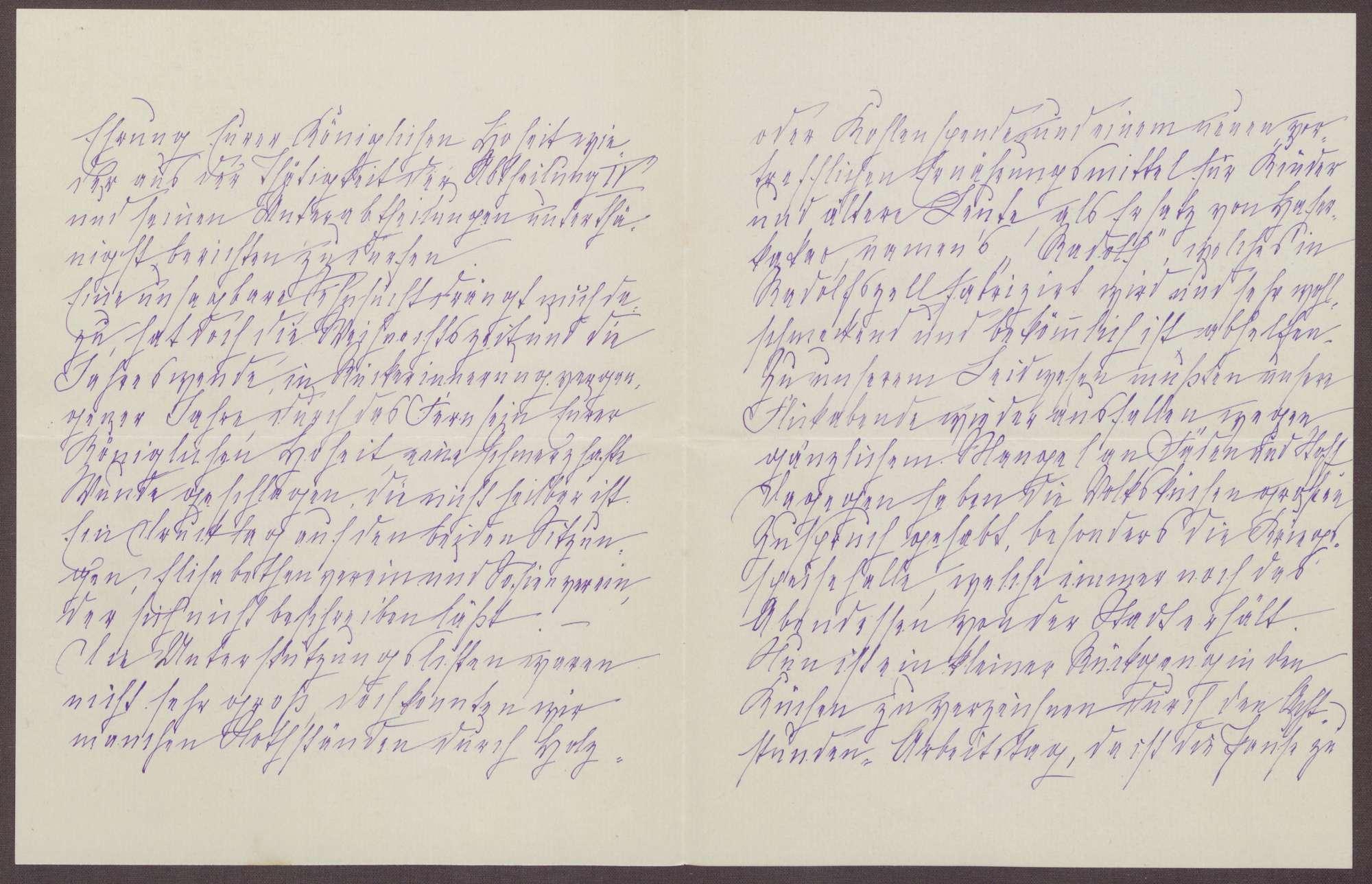 Schreiben von Anna Haas an die Großherzogin Luise; Holz-, Kohle- und Nahrungsmittelspenden und Renovierungsarbeiten in dem Heim, Bild 3