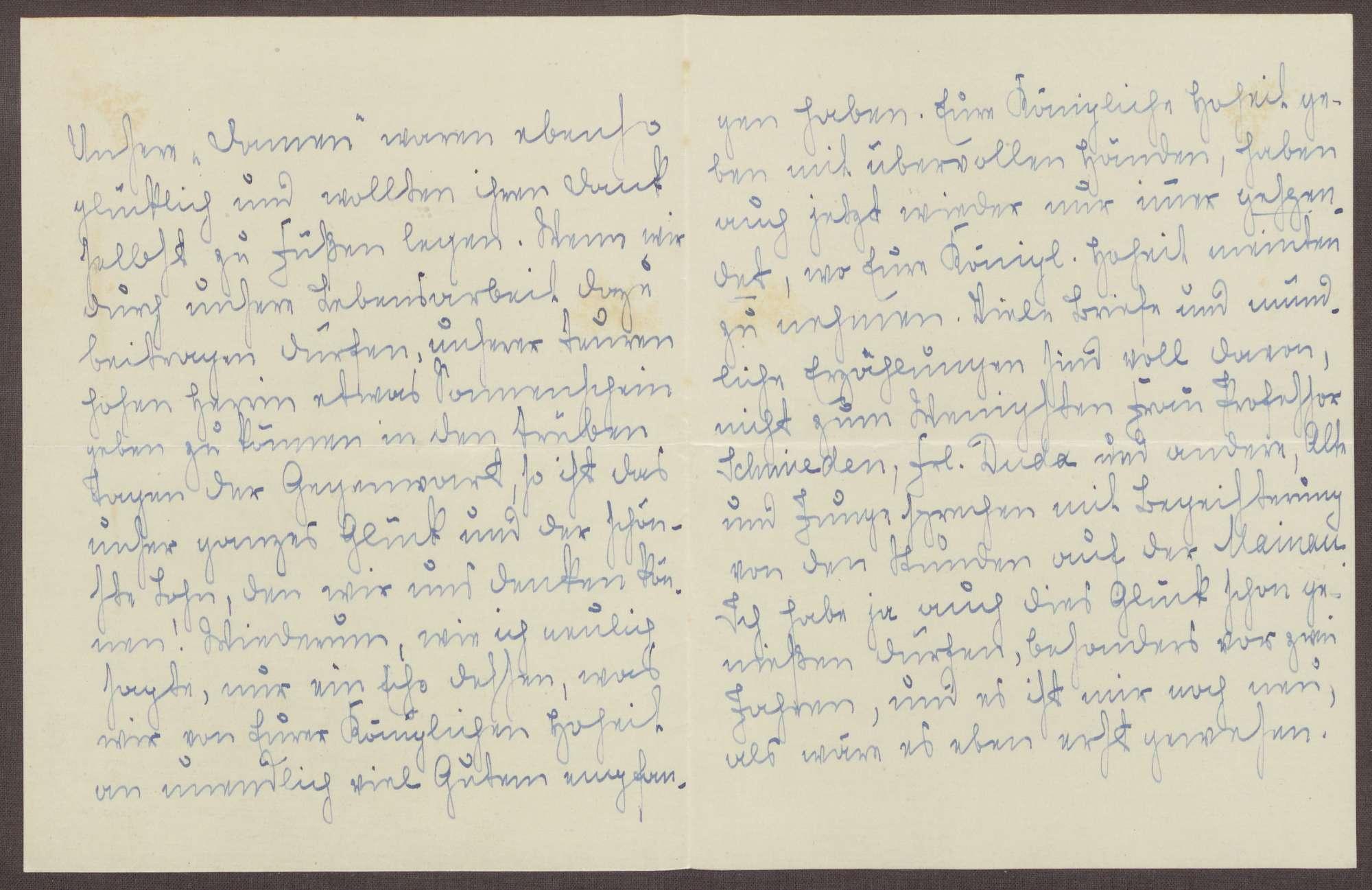 Schreiben von Emilie Göler an die Großherzogin Luise; Aufenthalt der ehemaligen Kinder des Pensionats auf der Insel Mainau und Erinnerungen an die eigene Reise, Bild 2