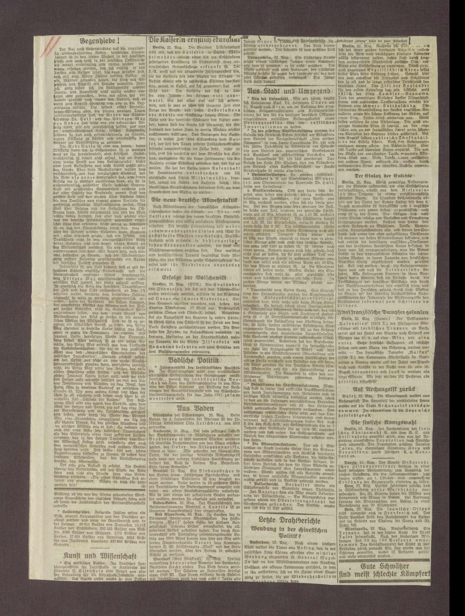 """Artikel in der Heidelberger Zeitung: """"Gegenhiebe"""", Bild 3"""