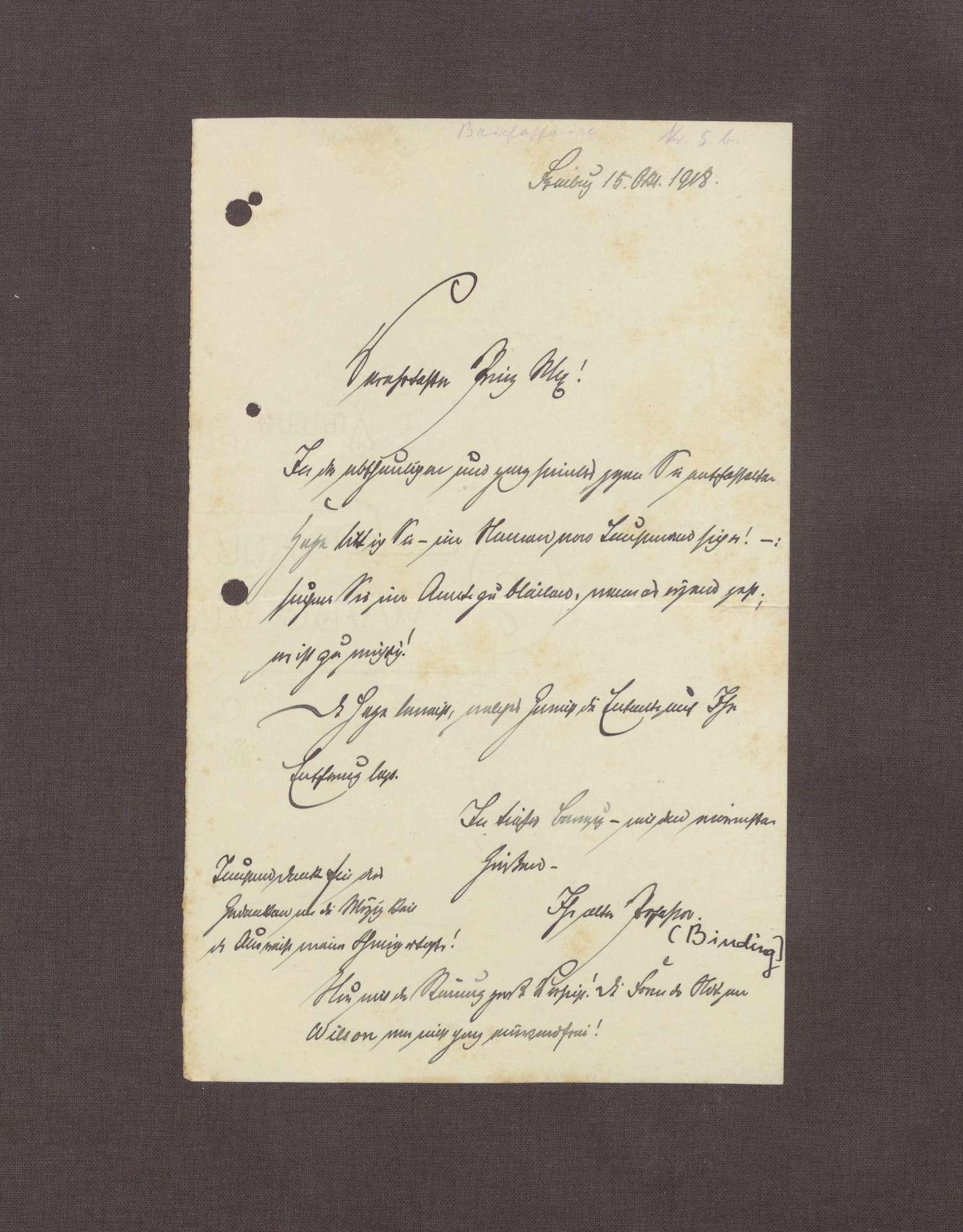 Schreiben von Karl Binding an Max von Baden, Zuspruch in der Hohenlohe-Briefaffäre, Bild 1