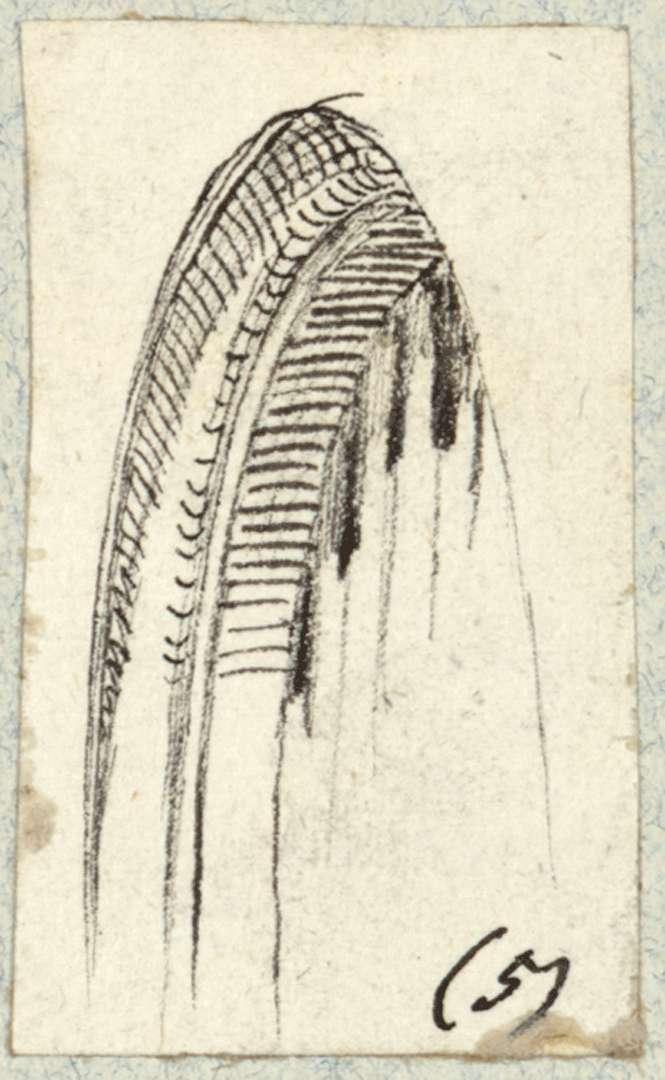 Grötzingen Detailzeichnung Torbogen, Bild 1