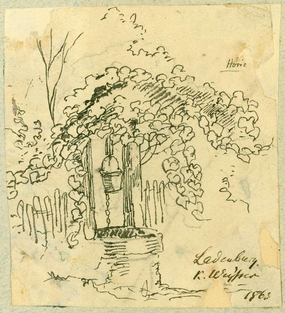 Ladenburg Ziehbrunnen unter Weinranken, Bild 1