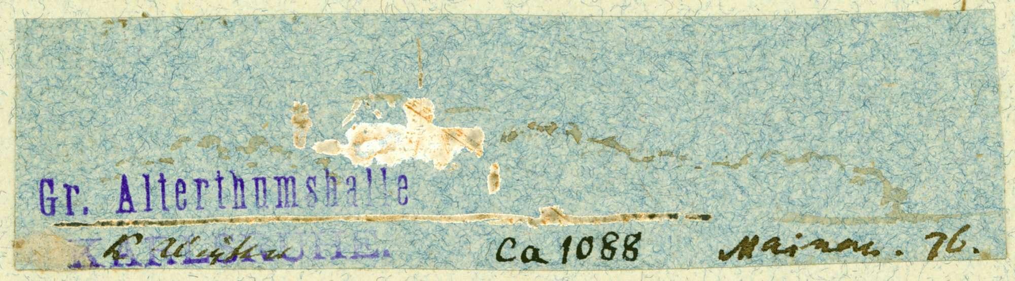 Mainau Blick auf die Insel, Bild 1