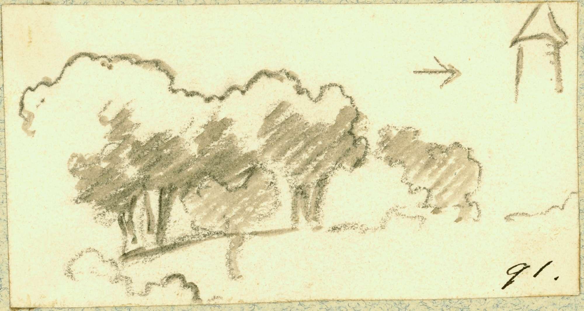 Neidenstein Baumgruppe, Bild 1