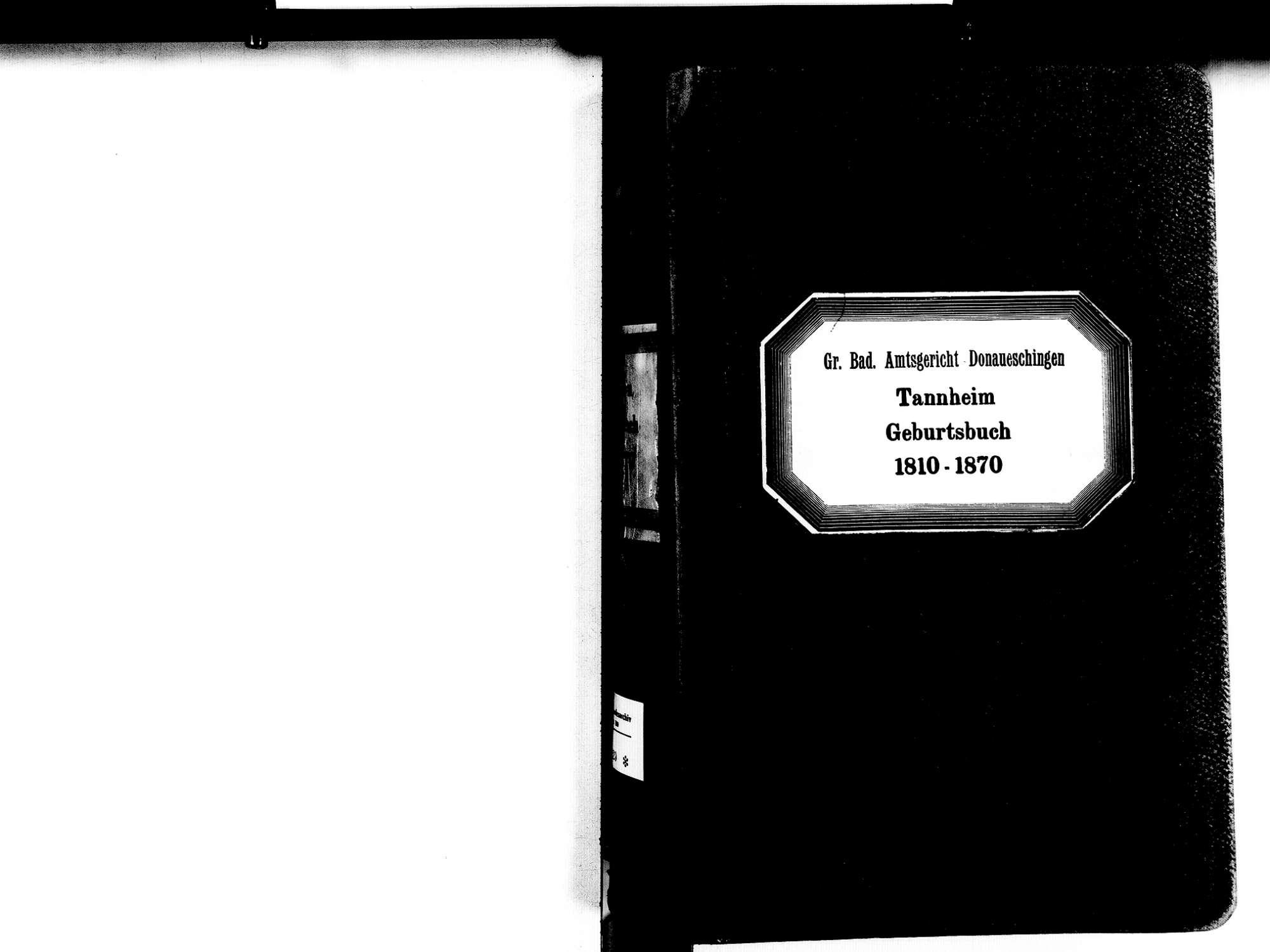 Tannheim, Villingen-Schwenningen VS; Katholische Gemeinde: Geburtenbuch 1810-1870, Bild 2