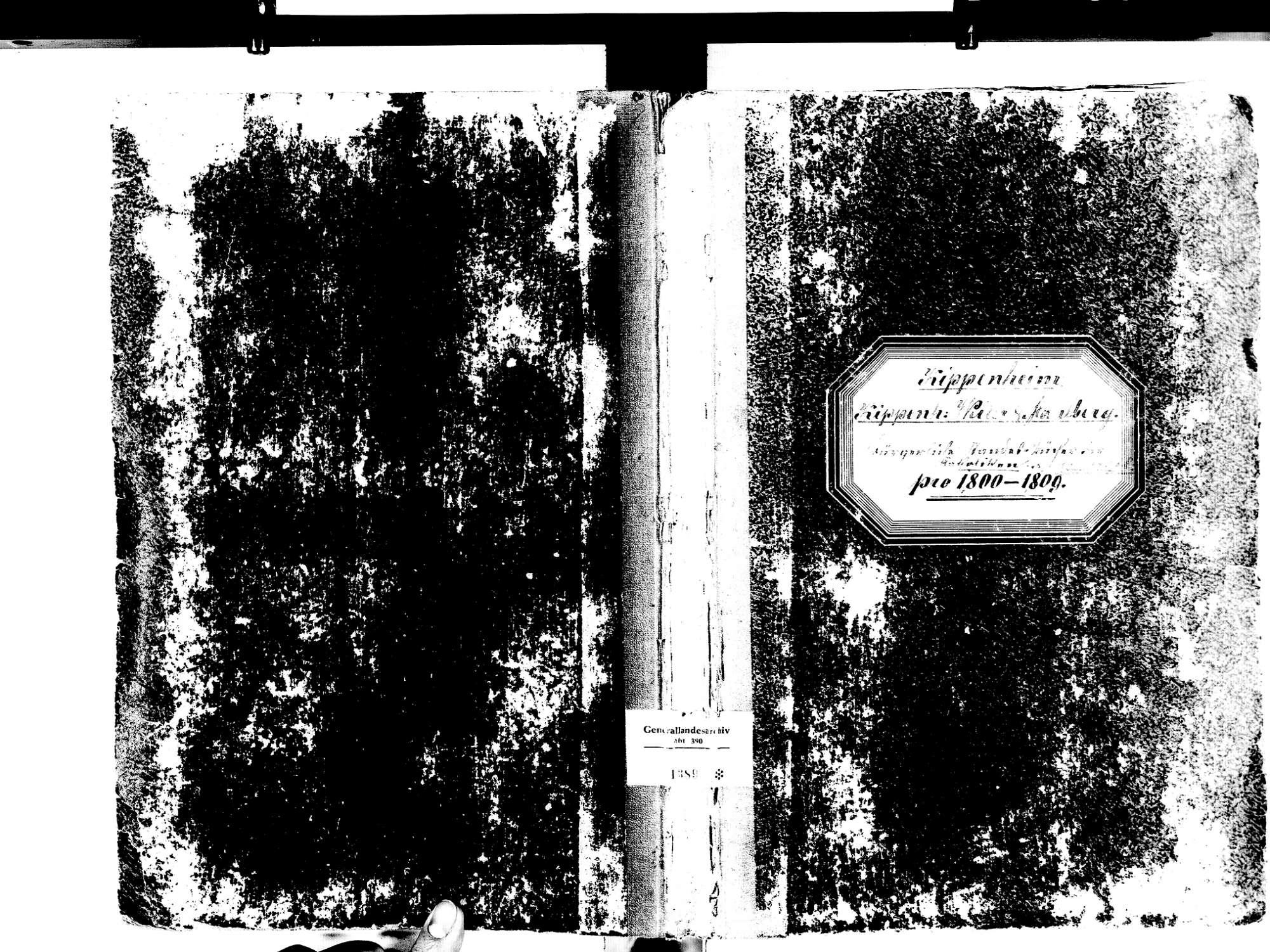 Kippenheim OG; Evangelische Gemeinde: Standesbuch 1800-1809, Bild 1