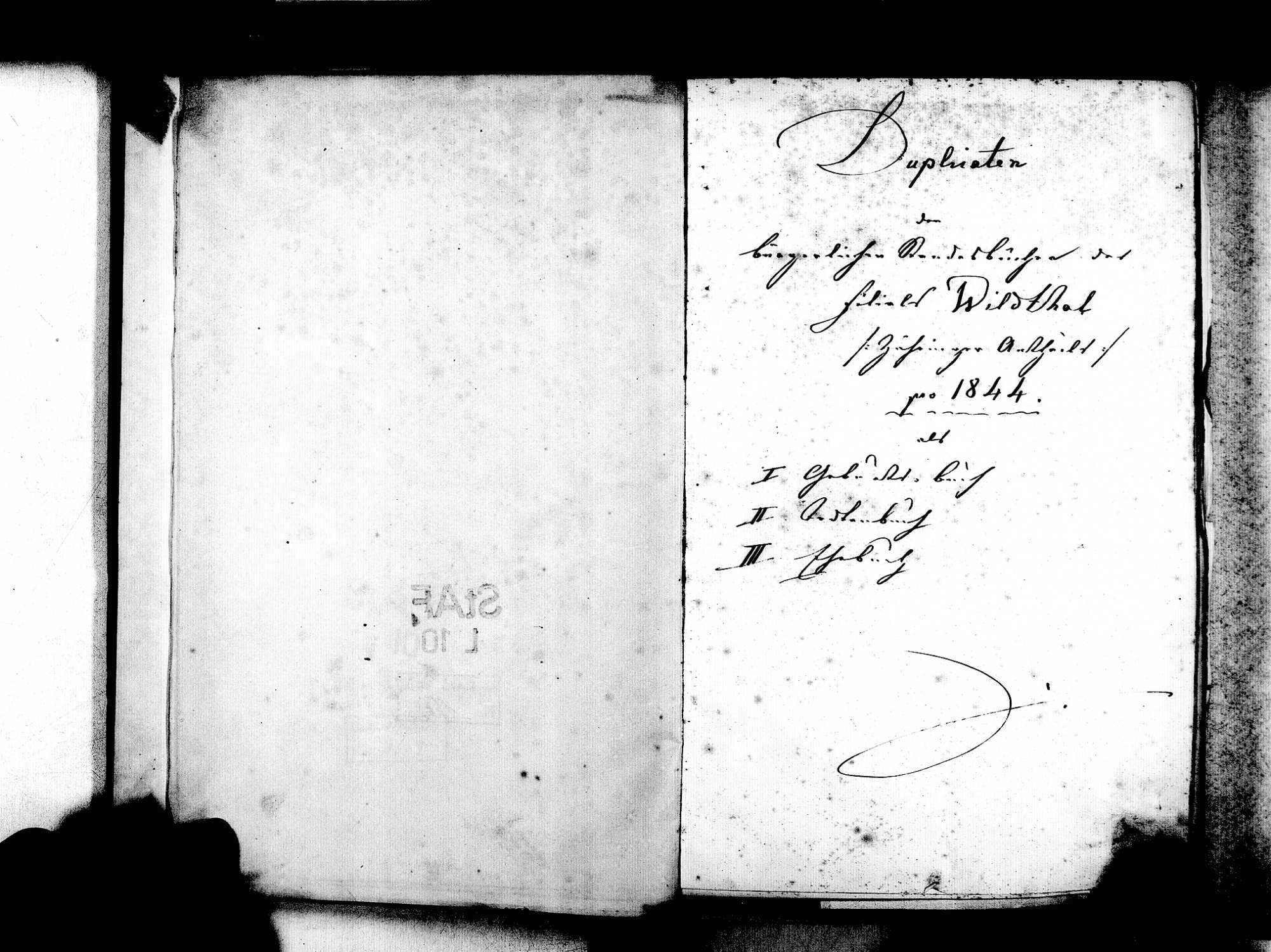 Wildtal, Gundelfingen FR; Katholische Gemeinde: Standesbuch 1844-1870, Bild 3