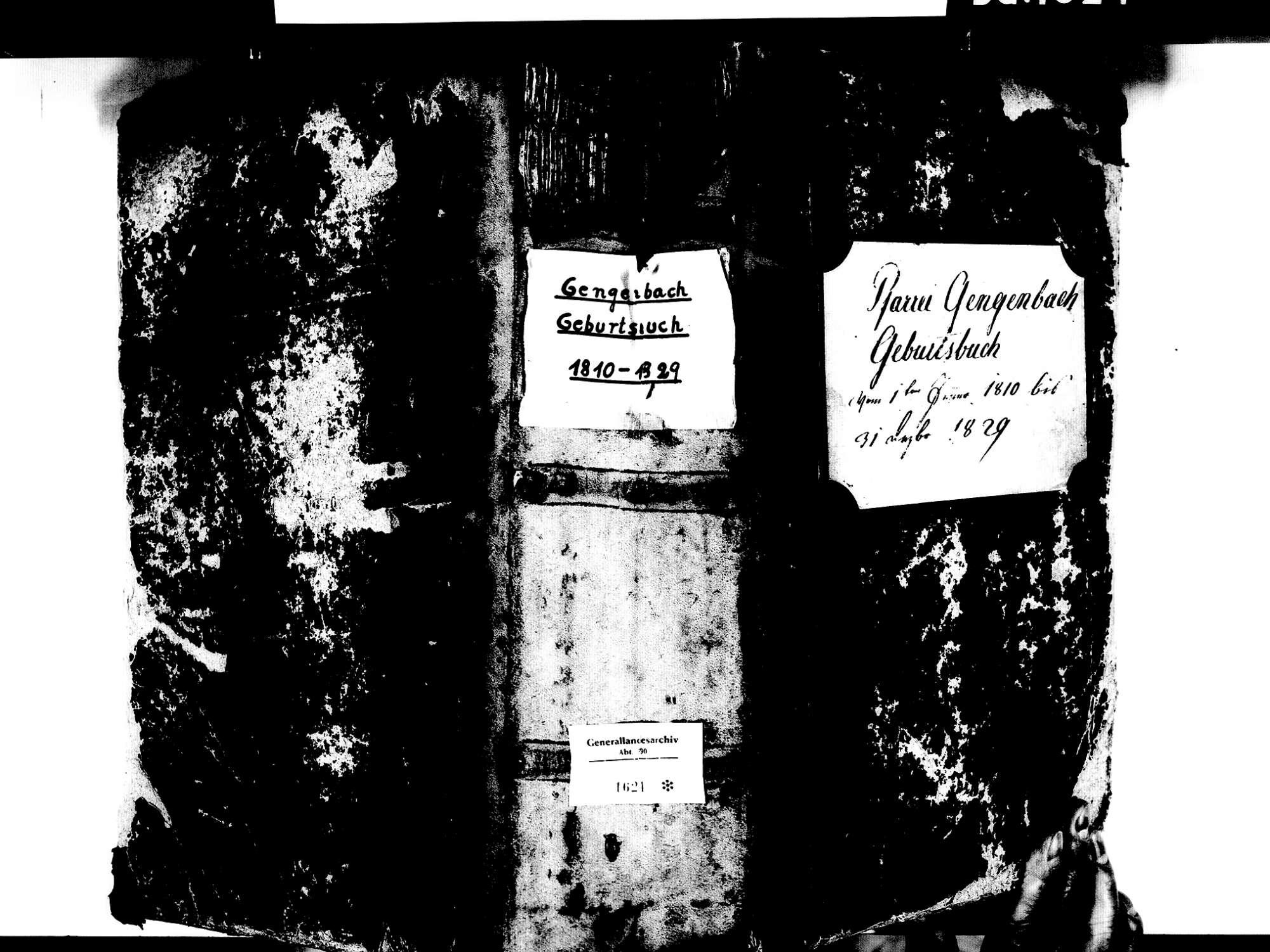 Gengenbach OG; Katholische Gemeinde: Geburtenbuch 1810-1829 Enthält: Einzelne Evangelische Einträge, Bild 1