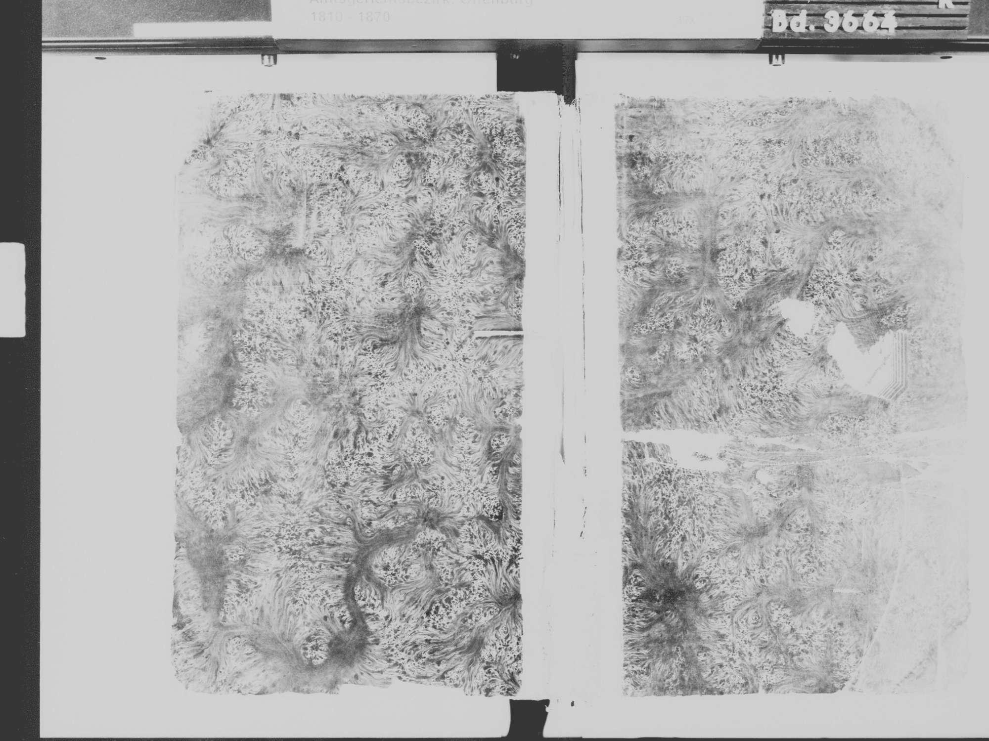 Diersburg, Hohberg OG; Israelitische Gemeinde: Geburtenbuch 1813-1869, Bild 2