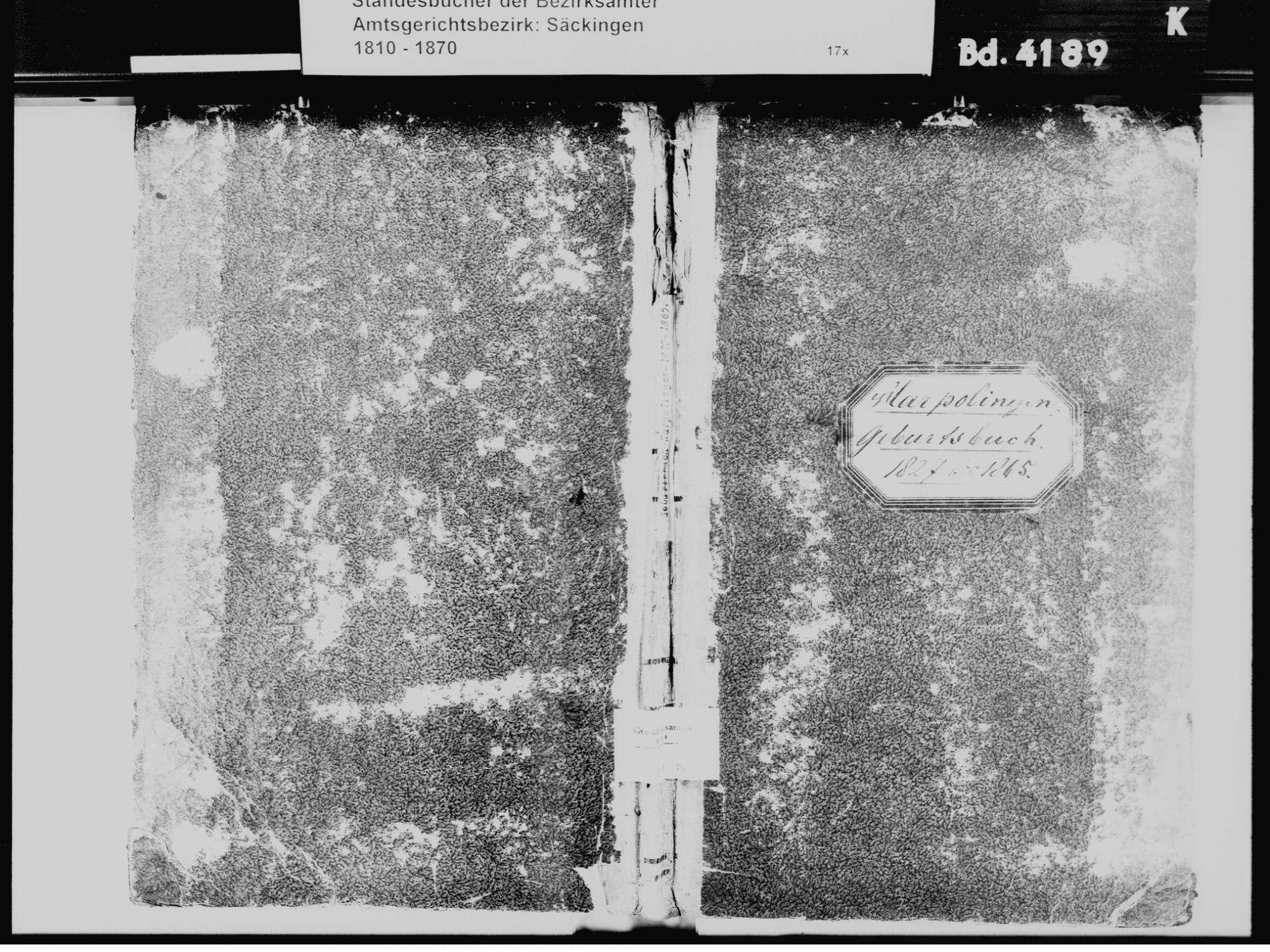 Harpolingen, Bad Säckingen WT; Katholische Gemeinde: Geburtenbuch 1827-1865, Bild 2