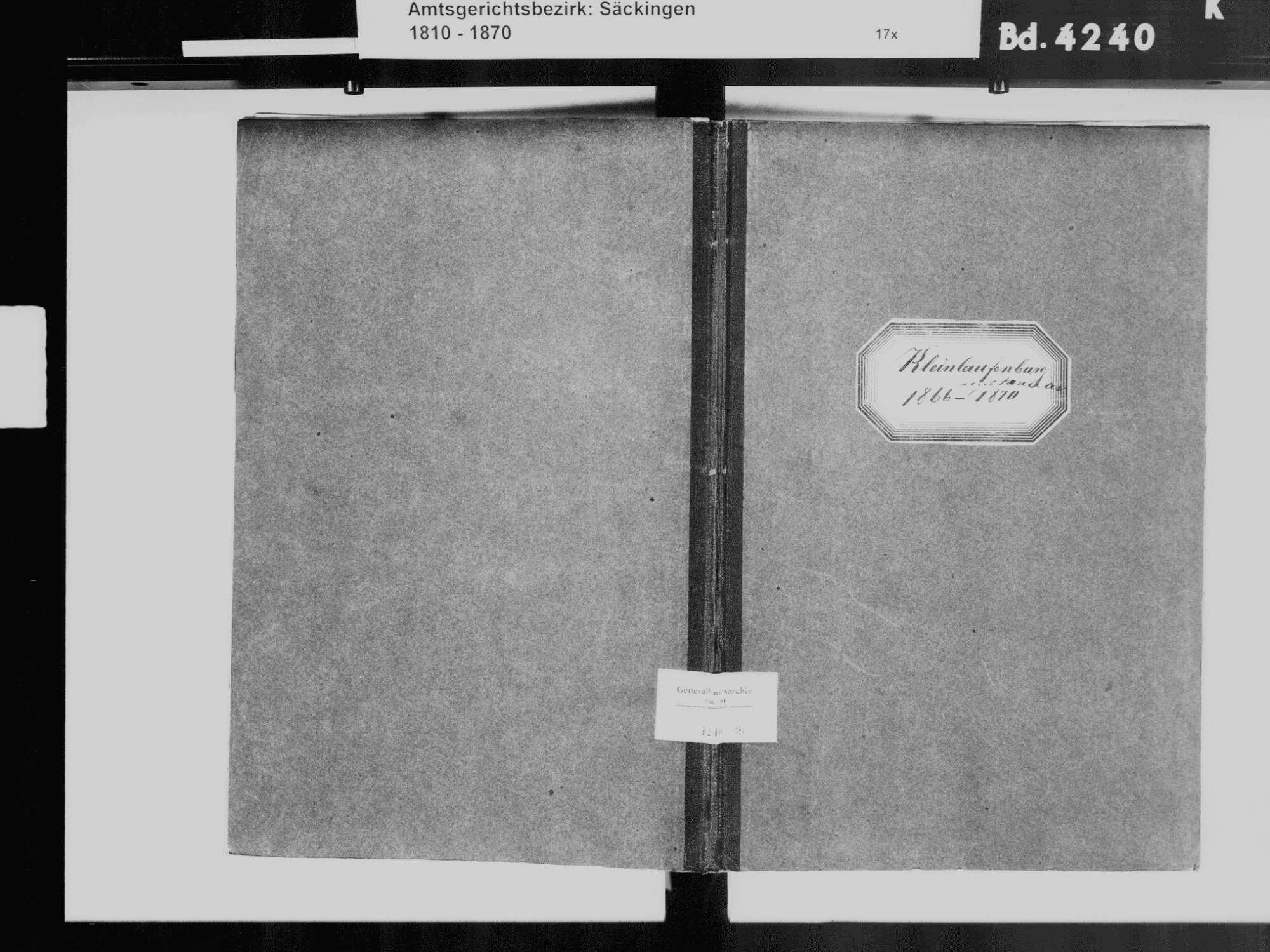 Laufenburg (Baden) WT; Katholische Gemeinde: Heiratsbuch 1866-1870, Bild 2