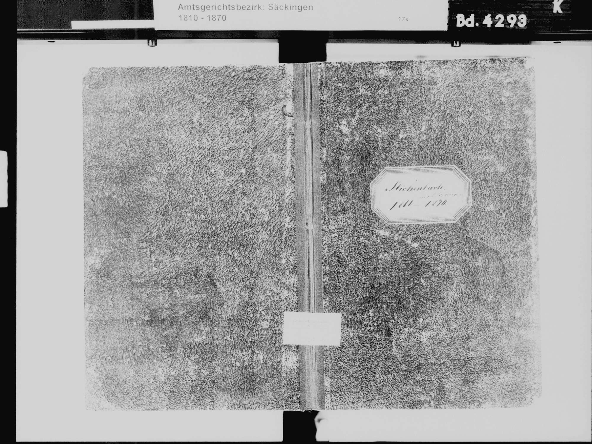 Rickenbach WT; Katholische Gemeinde: Sterbebuch 1866-1870, Bild 2