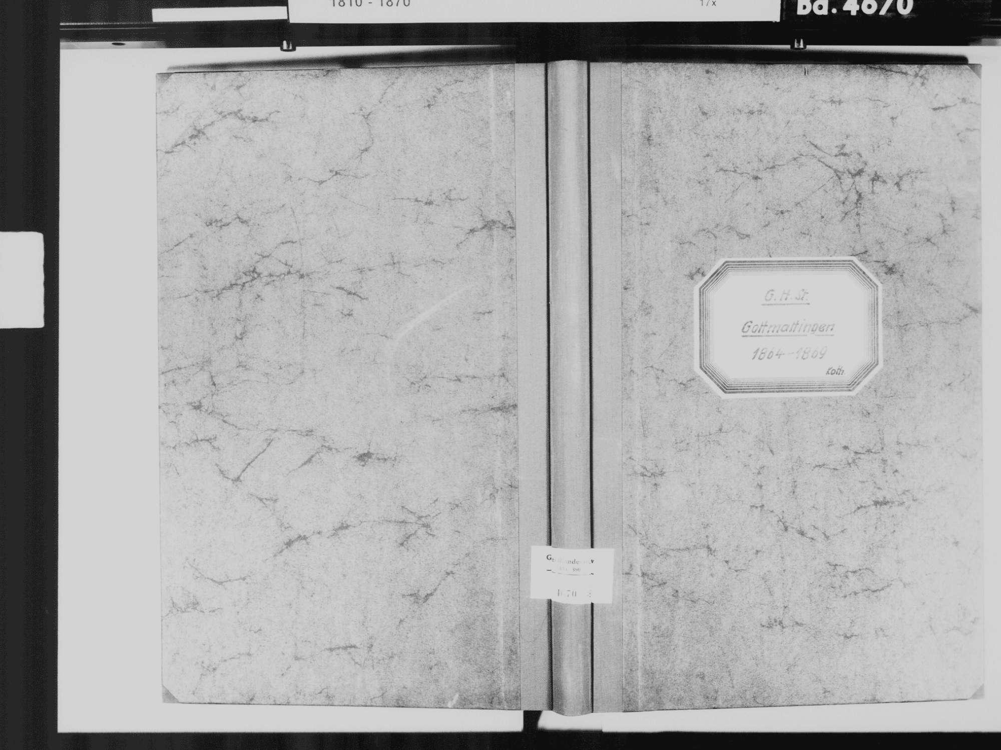 Gottmadingen KN; Katholische Gemeinde: Standesbuch 1864-1869, Bild 2