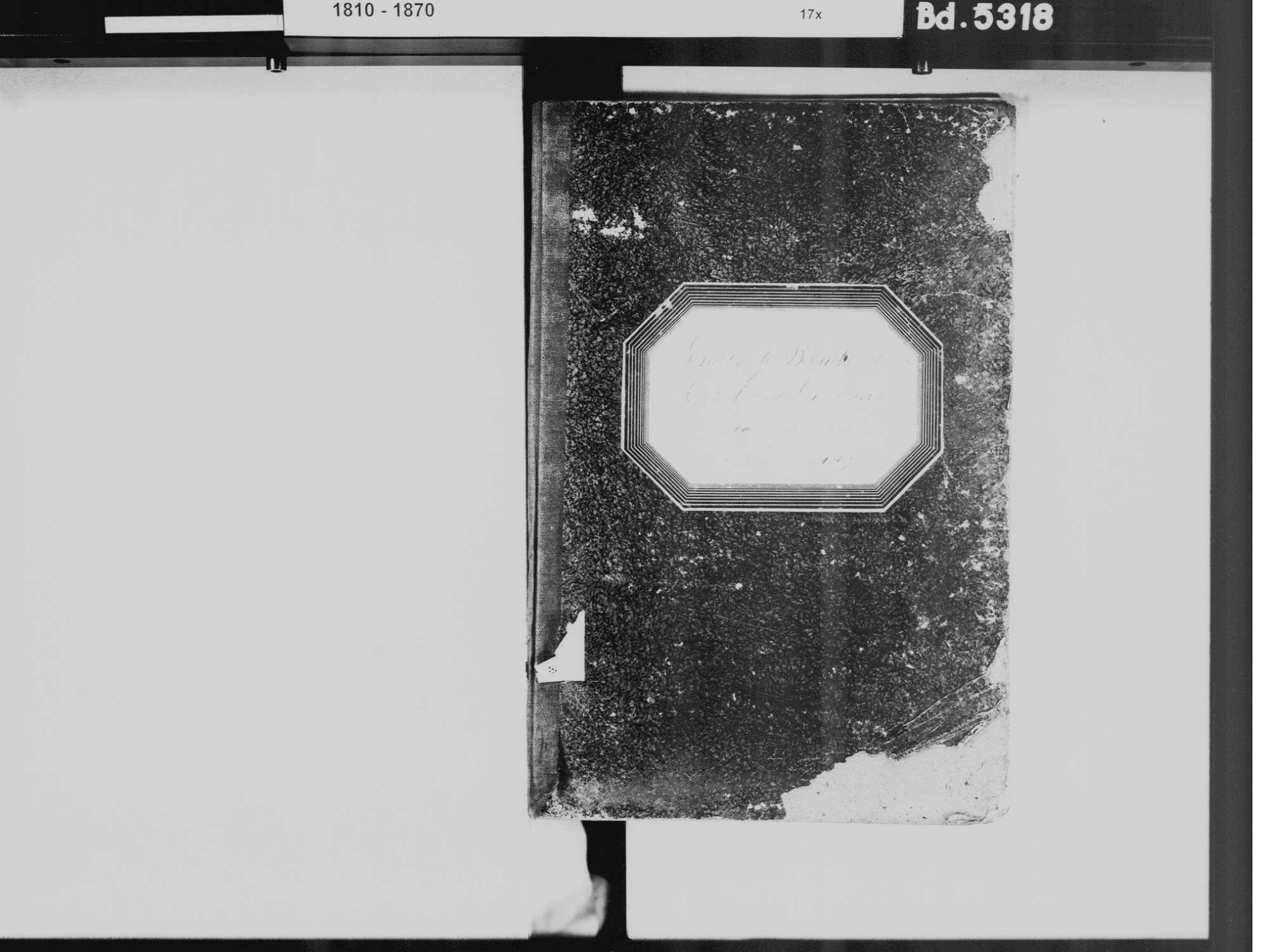 Ernatsreute, Lippertsreute, Überlingen FN; Katholische Gemeinde: Standesbuch 1866-1869, Bild 3