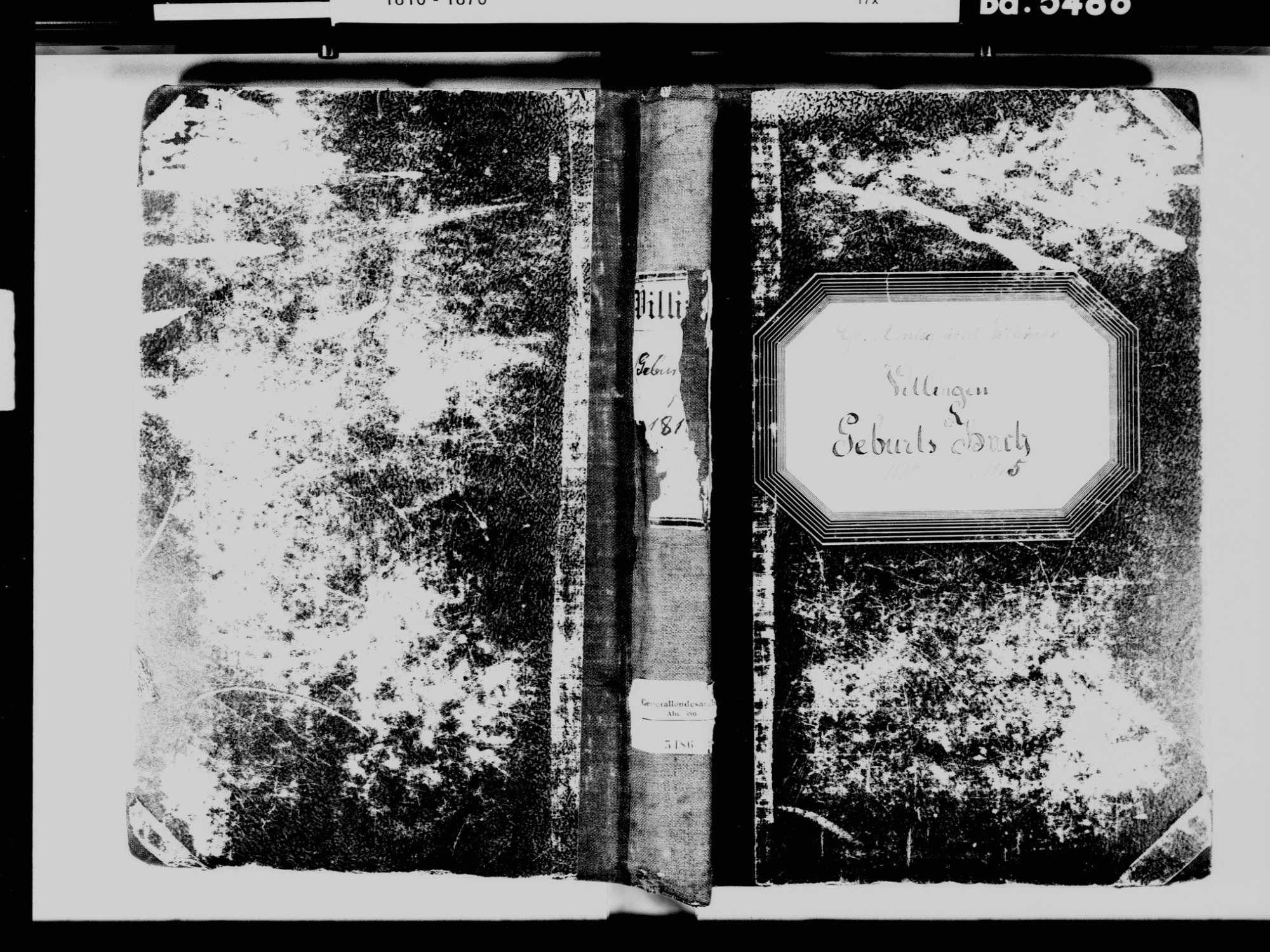 Villingen, Villingen-Schwenningen VS; Katholische Gemeinde: Geburtenbuch 1810-1815, Bild 2