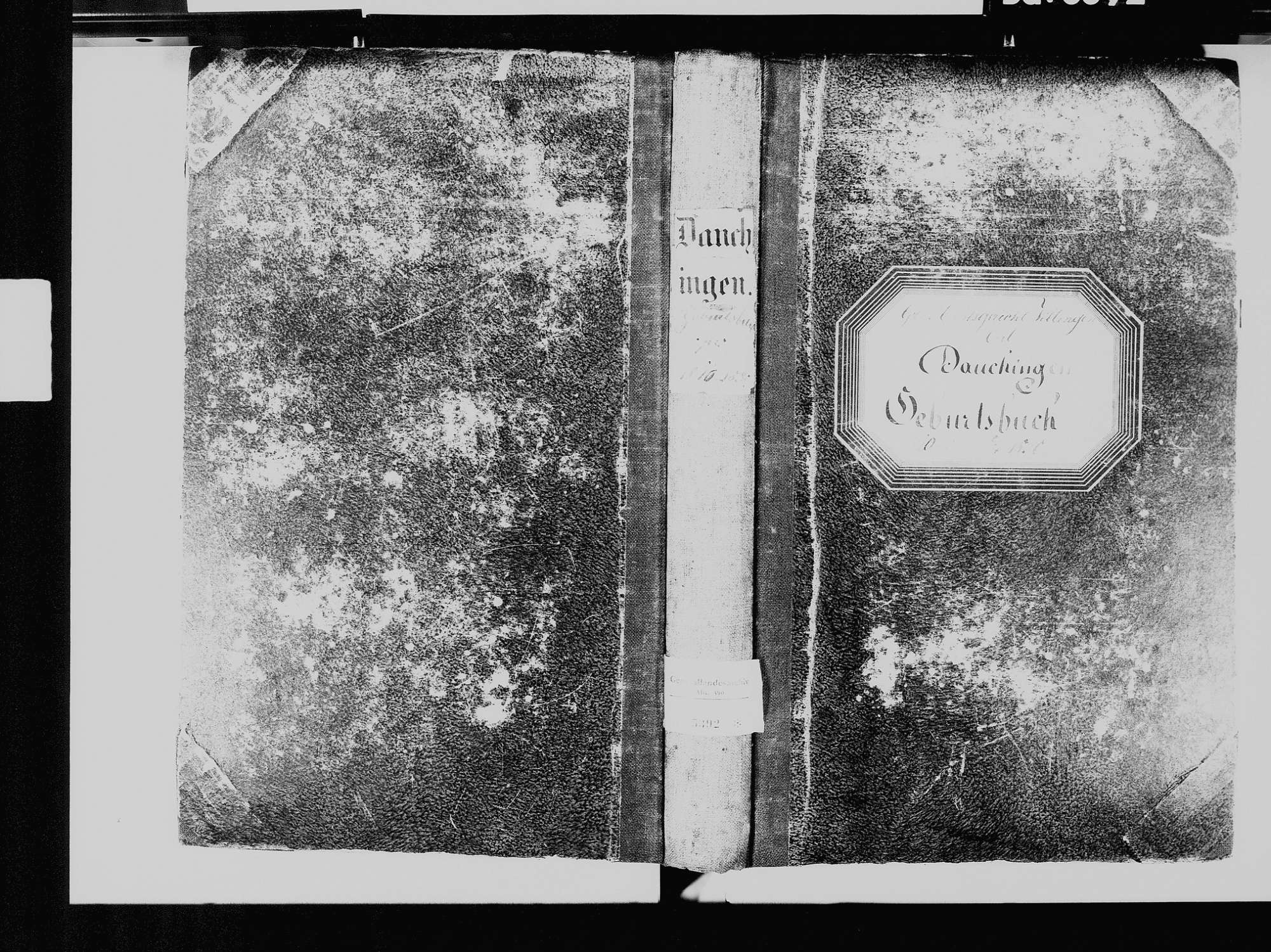 Dauchingen VS; Katholische Gemeinde: Geburtenbuch 1810-1830, Bild 2