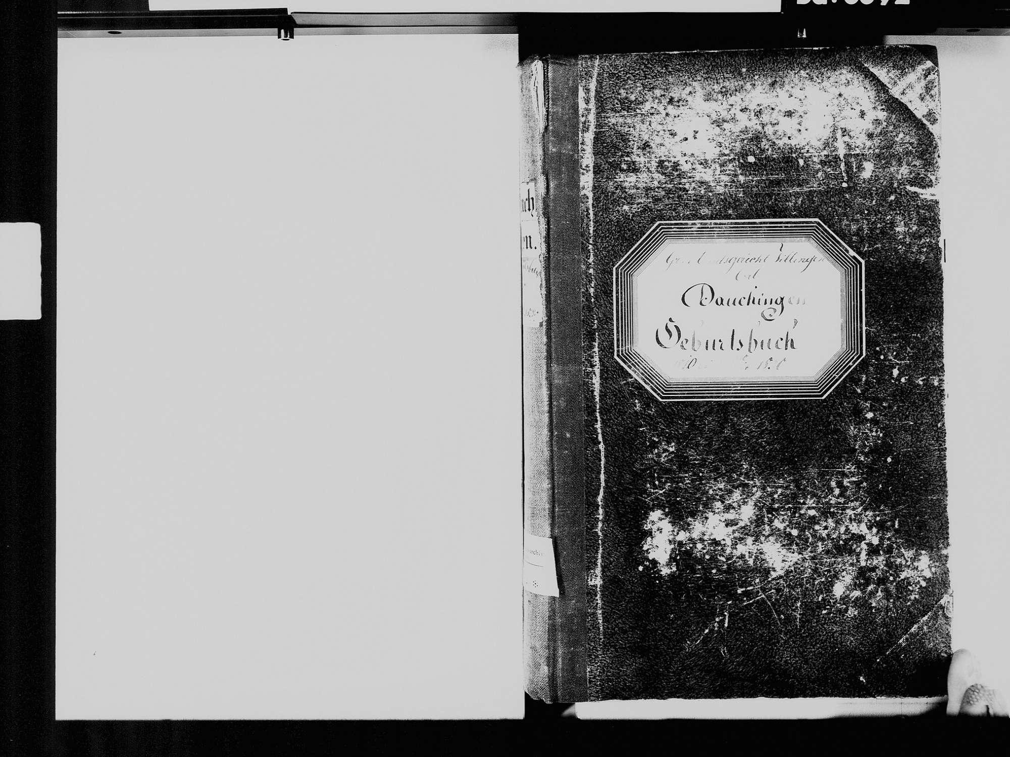 Dauchingen VS; Katholische Gemeinde: Geburtenbuch 1810-1830, Bild 3