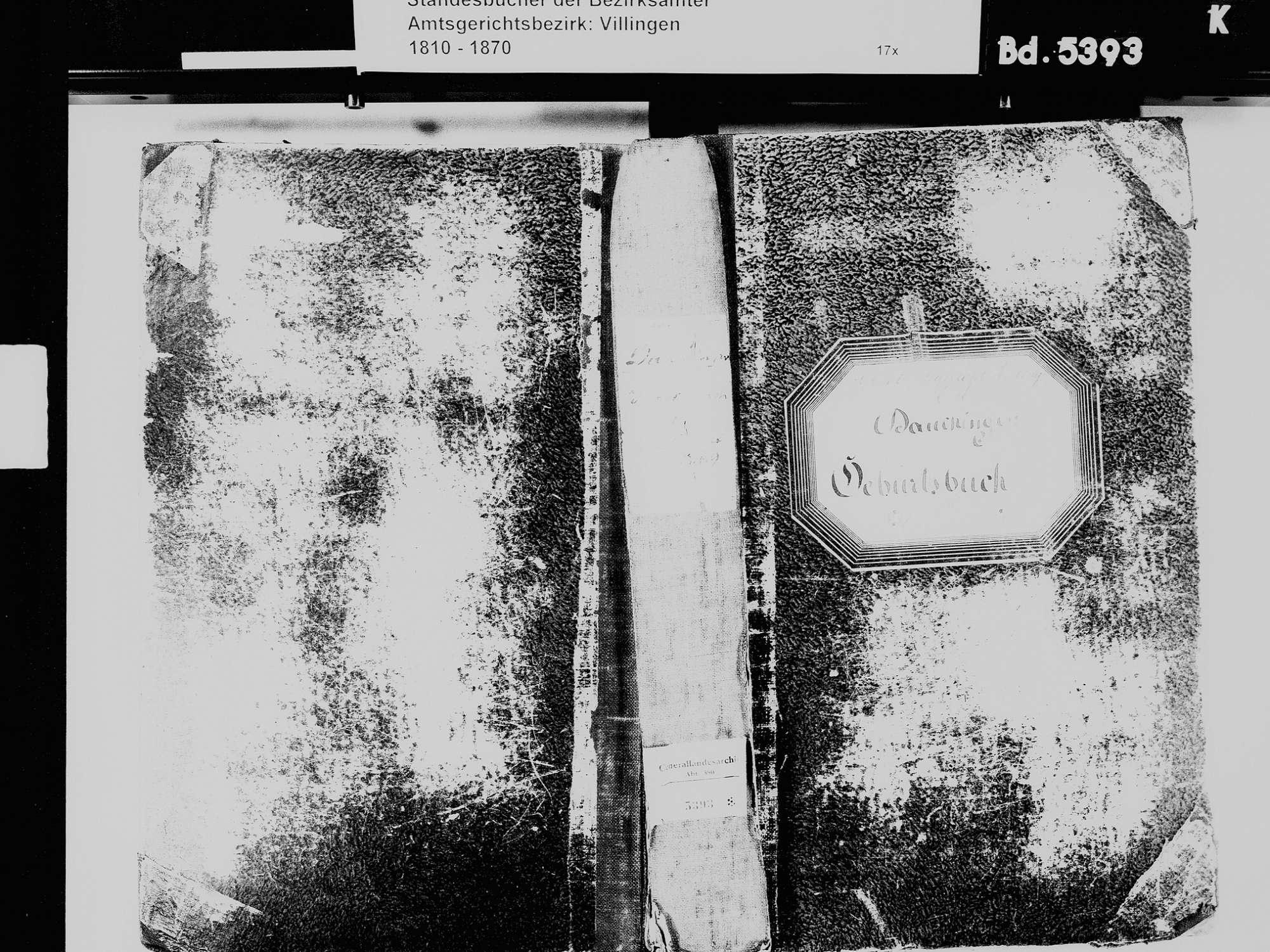 Dauchingen VS; Katholische Gemeinde: Geburtenbuch 1831-1869, Bild 2