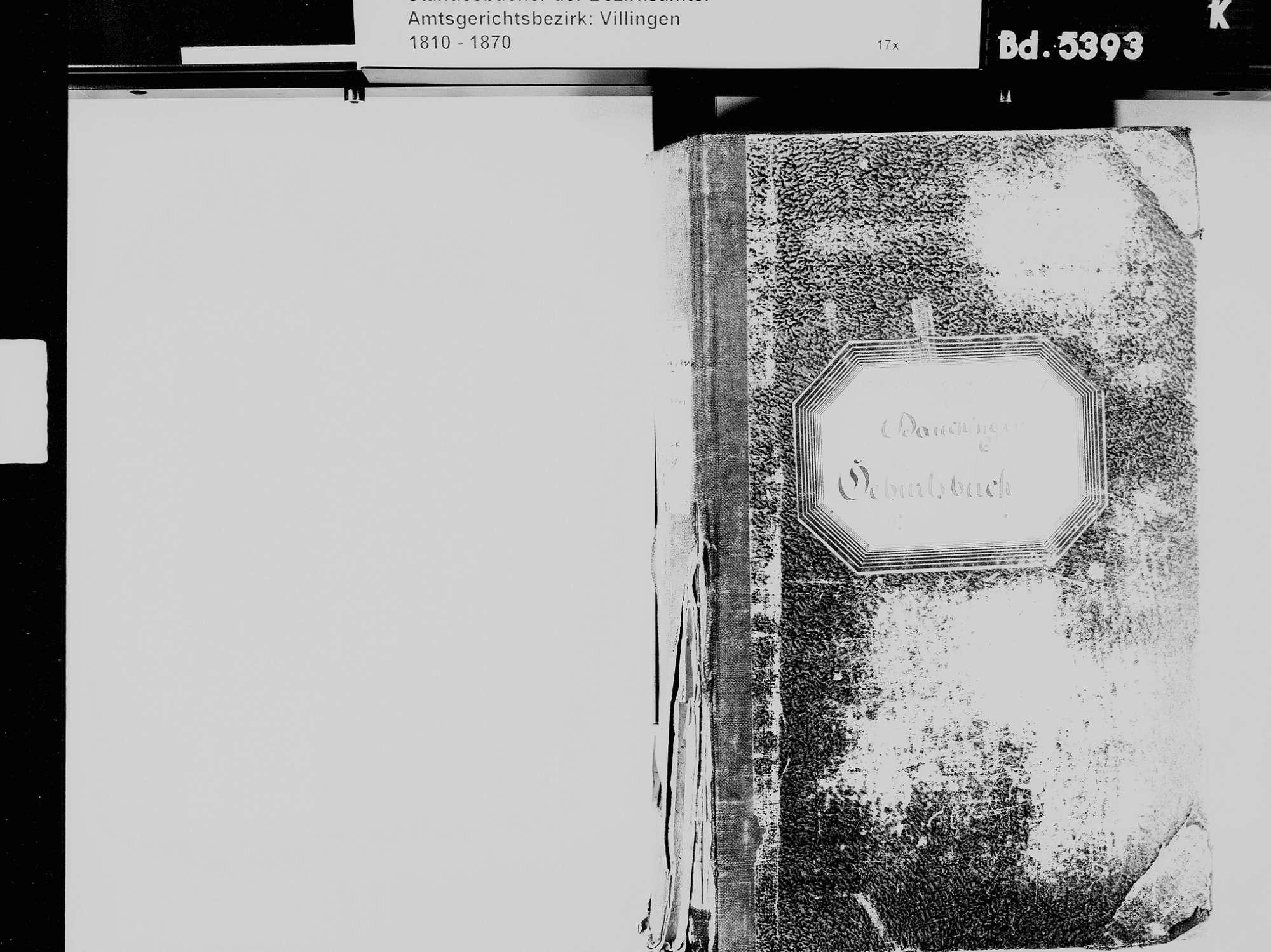 Dauchingen VS; Katholische Gemeinde: Geburtenbuch 1831-1869, Bild 3