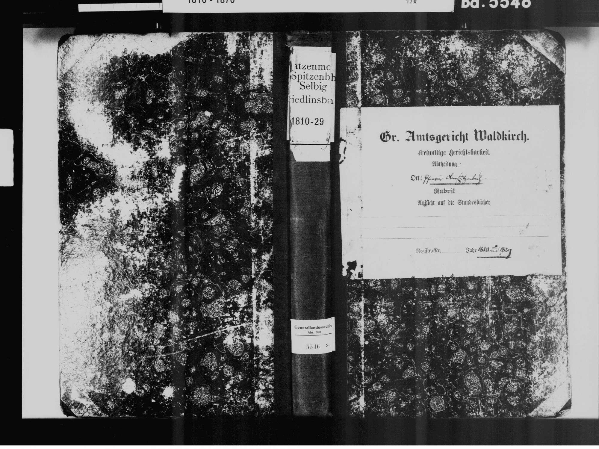 Katzenmoos, Elzach EM; Katholische Gemeinde: Standesbuch 1810-1829, Bild 2