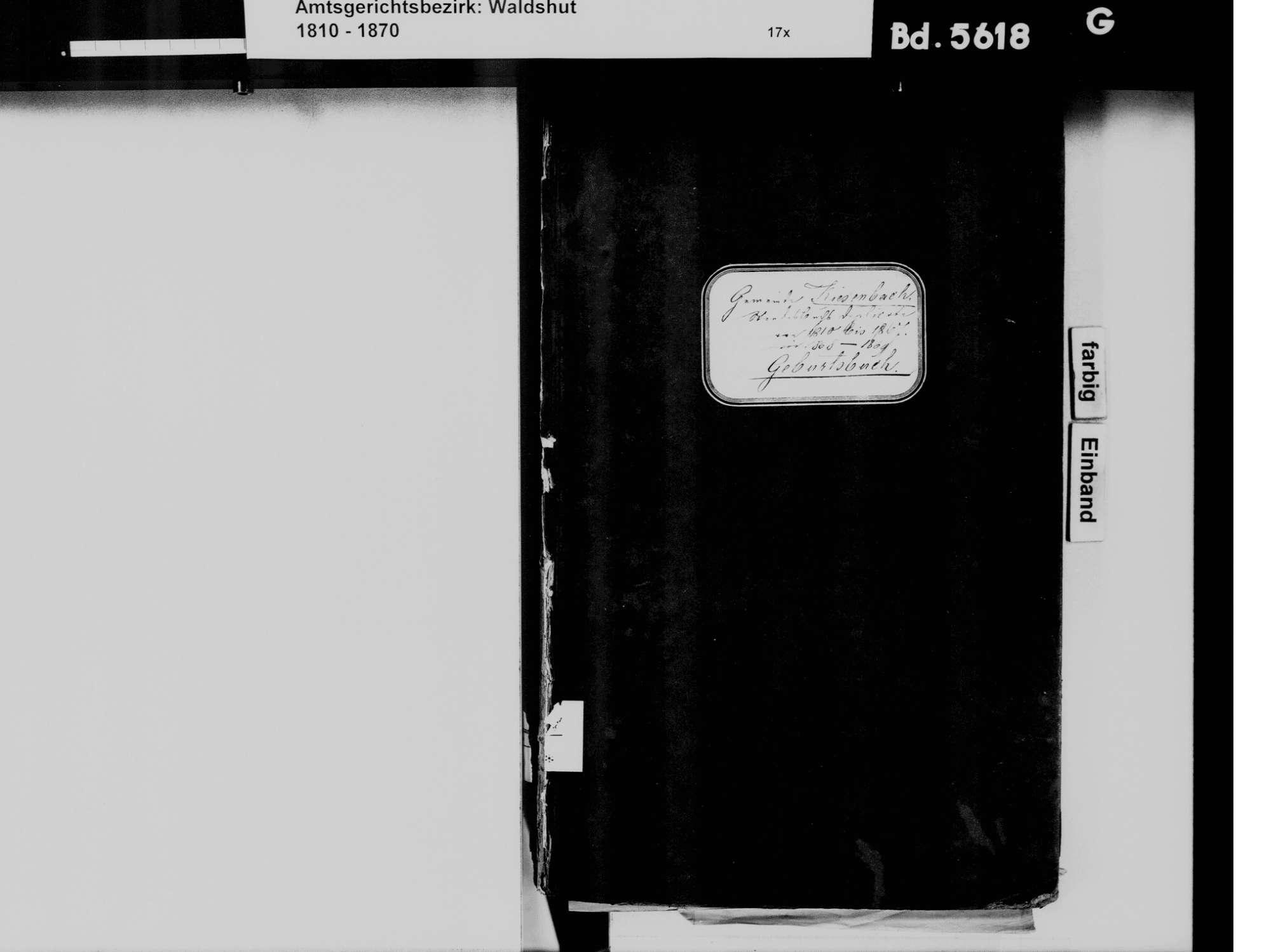 Kiesenbach, Albbruck WT; Katholische Gemeinde: Geburtenbuch 1810-1869, Bild 2