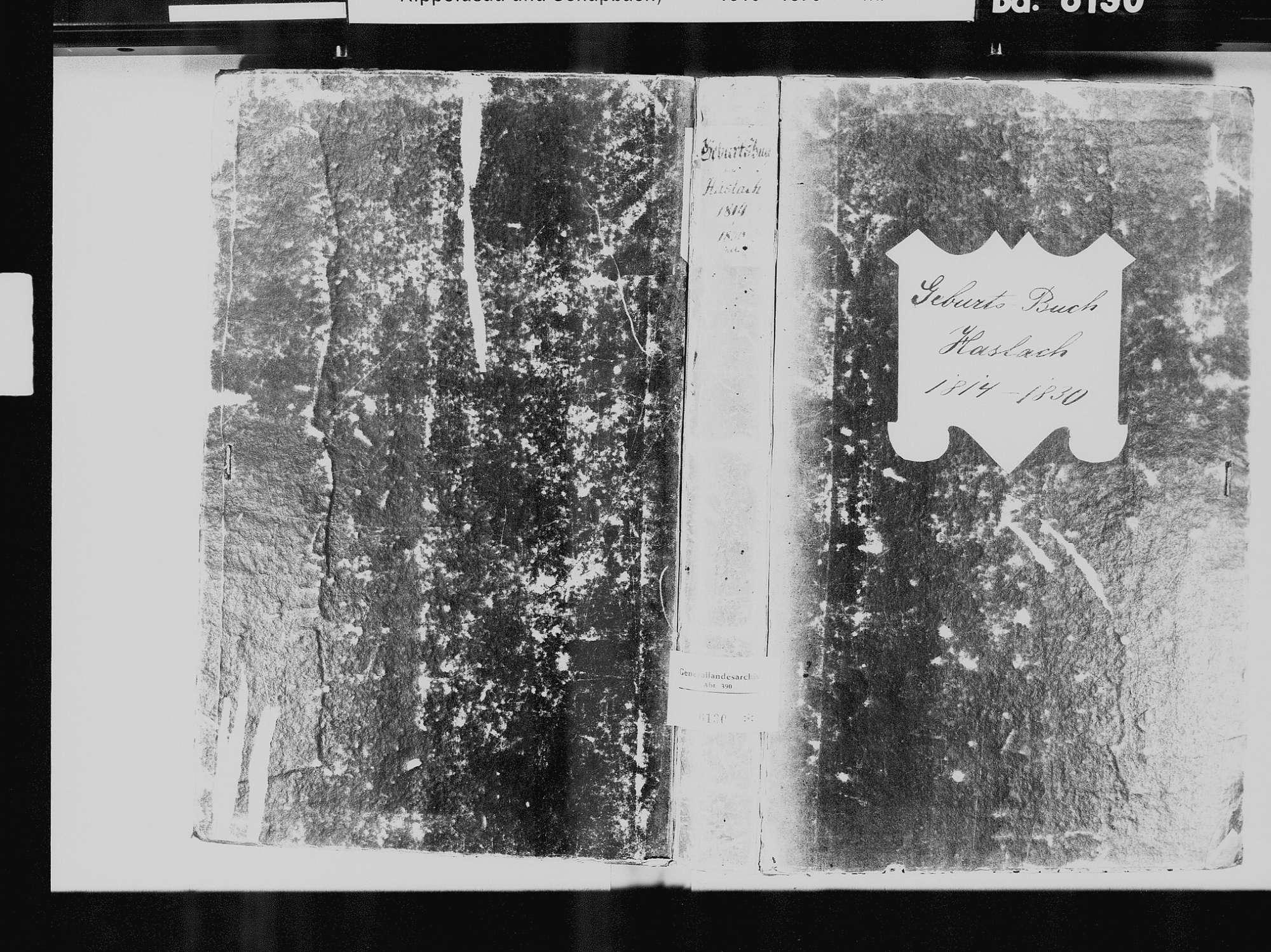 Haslach im Kinzigtal OG; Katholische Gemeinde: Geburtenbuch 1814-1830, Bild 2