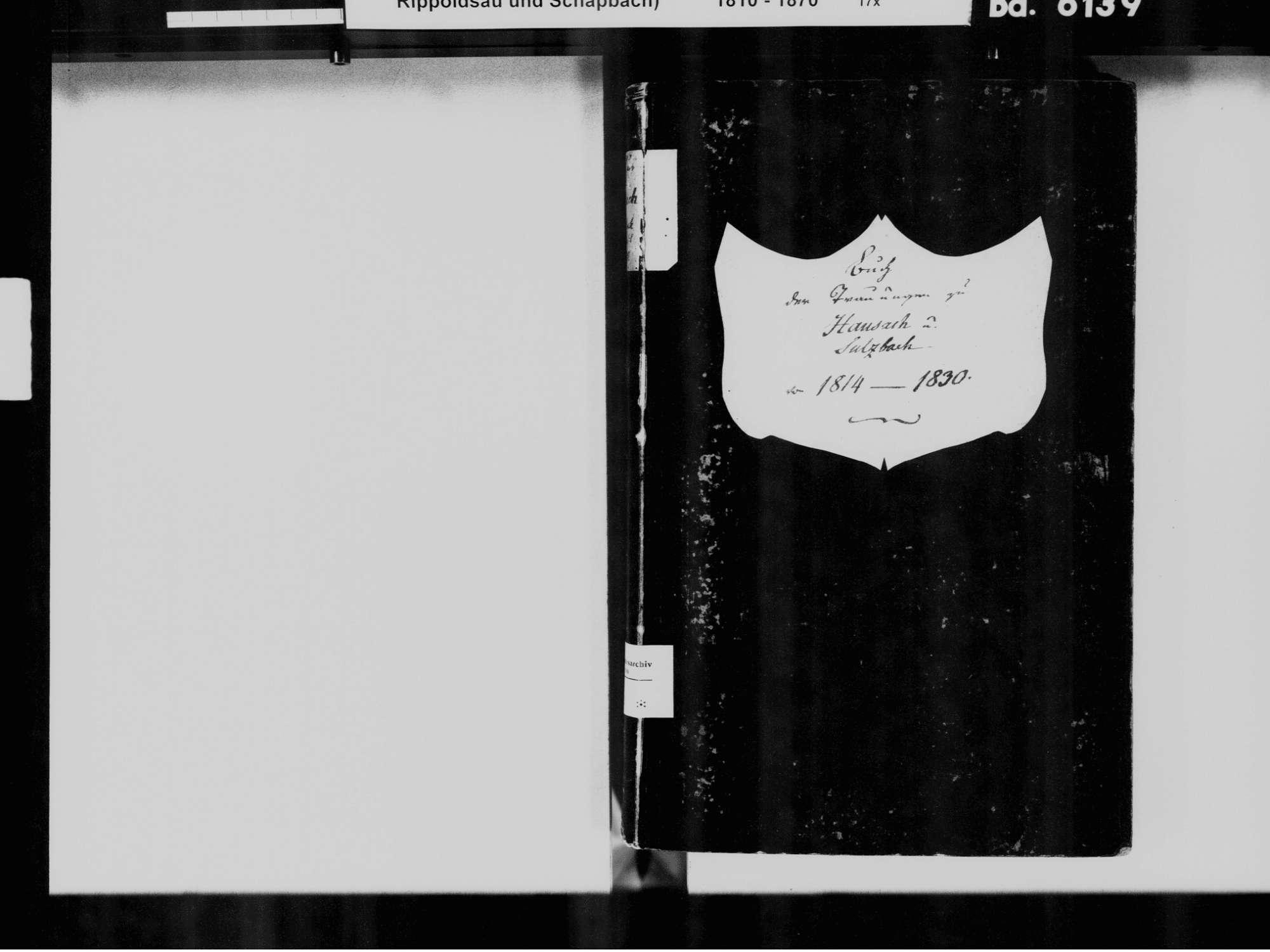 Hausach OG; Katholische Gemeinde: Heiratsbuch 1814-1830, Bild 3