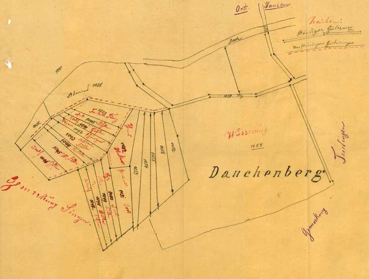 Wegverhältnisse auf den Wiesen im Gewann Dauchenberg auf Gemarkung Hausen an der Aach, Bild 1