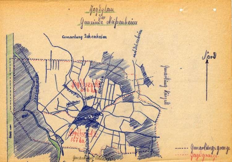 Verpachtung der Gemeindejagd in Meißenheim, Bild 1