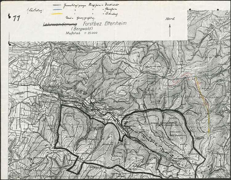 Waldtausch zwischen den Gemeinden Dörlinbach, Ettenheim und Ringsheim, Bild 1