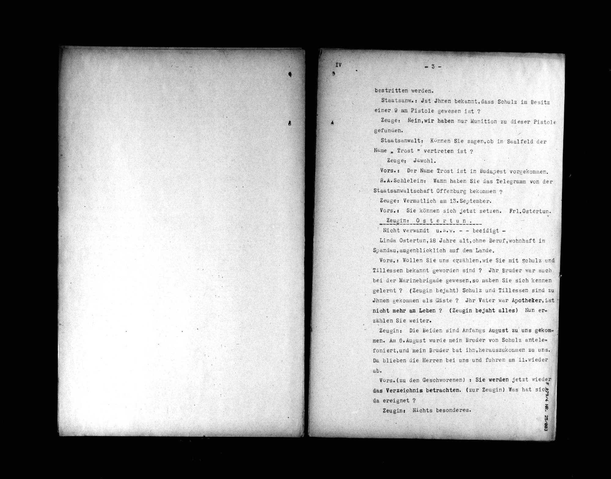 Protokolle der Hauptverhandlung gegen Manfred v. Killinger wegen Beihilfe zum Mord (4. Verhandlungstag, Tatortbesichtigung), Bild 3