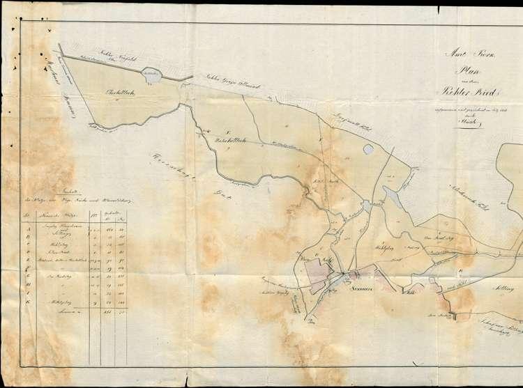 Urbarmachung und Verteilung des dem Dorf Kehl mit Sundheim gehörigen so genannten Kehler Rieds, Bild 1