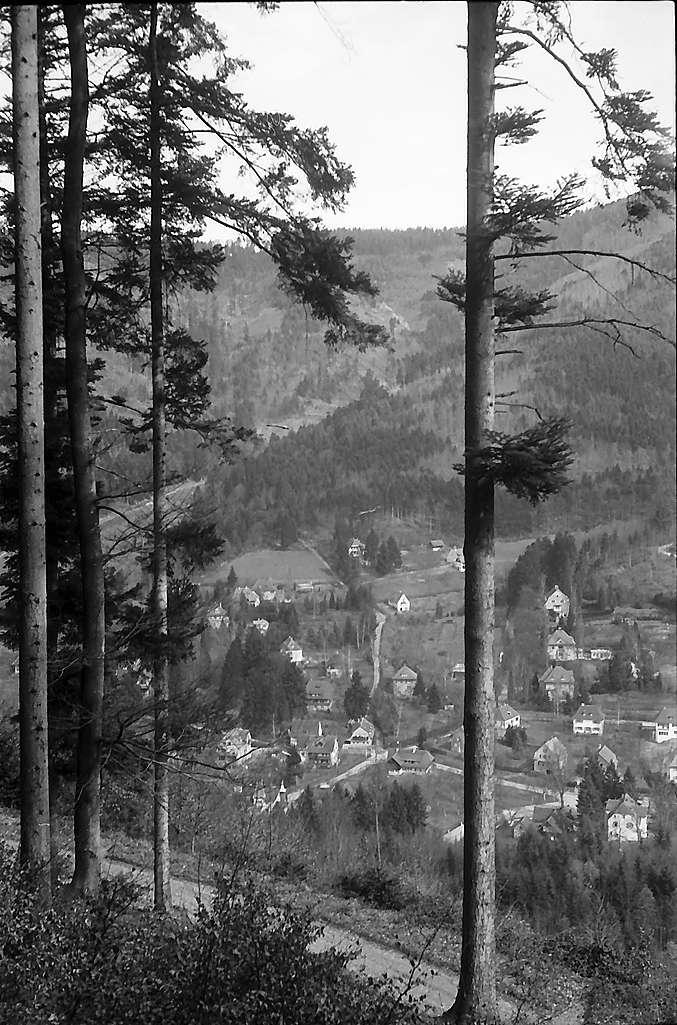 Freiburg i. Br.: Blick auf Günterstal vom Berg, Bild 1