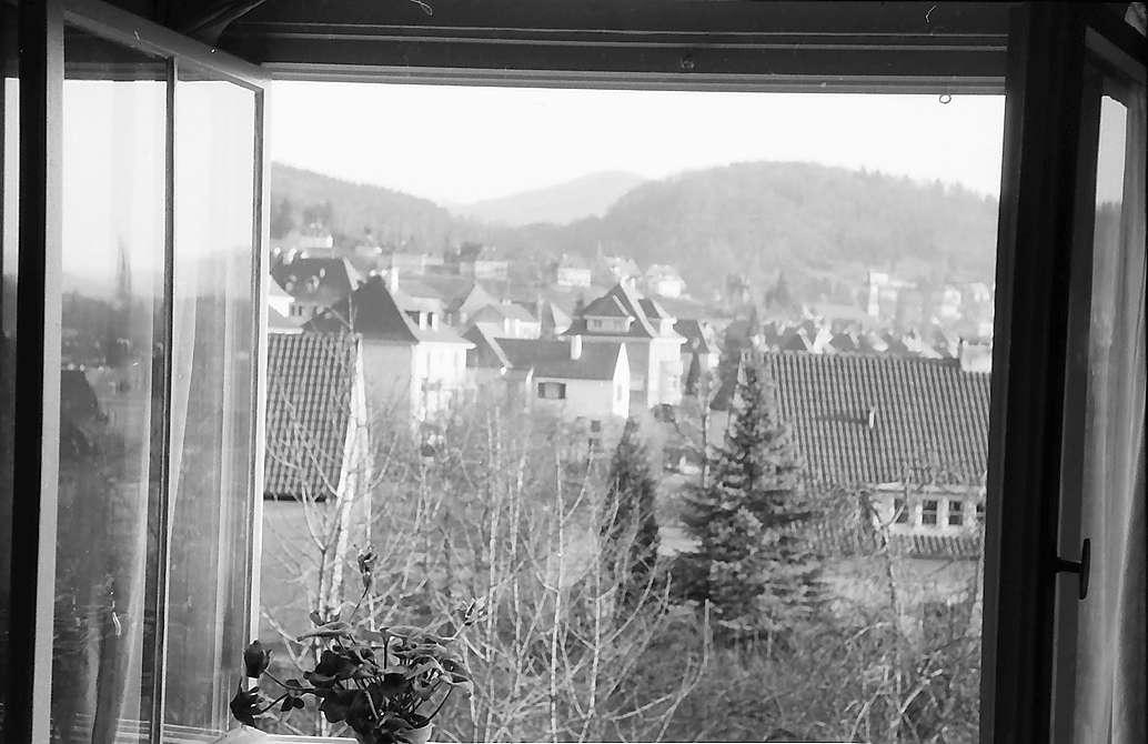 Freiburg i. Br.: Ausblick aus Fenster auf Herdern, Bild 1