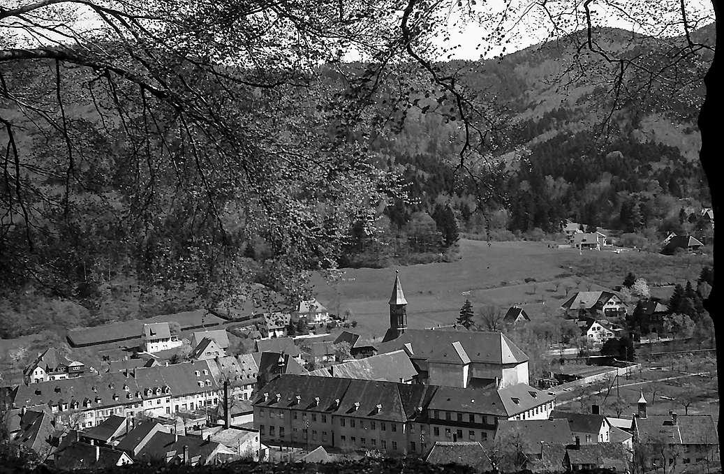 Freiburg i. Br.: Blick auf das Kloster in Günterstal von oben, Bild 1