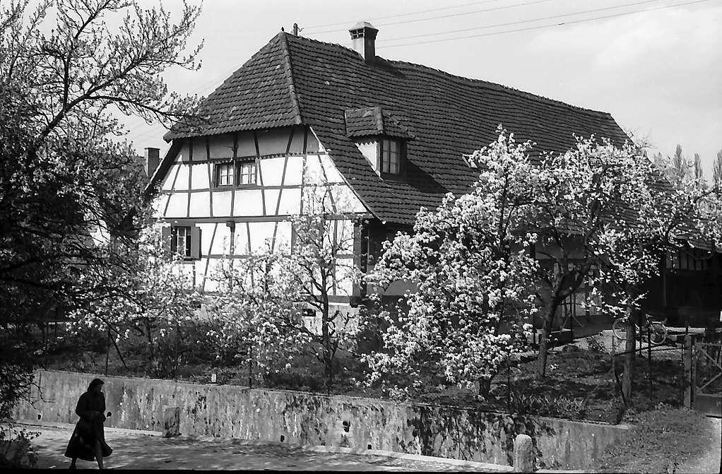 Freiburg i. Br.: Bauernhaus mit Blüten im Röteweg in Zähringen, Bild 1
