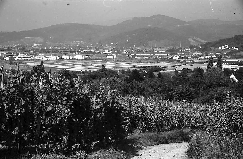 Freiburg i. Br.: Blick von den Weinbergen in St. Georgen auf die Freiburger Bucht mit Teleobjektiv, Bild 1